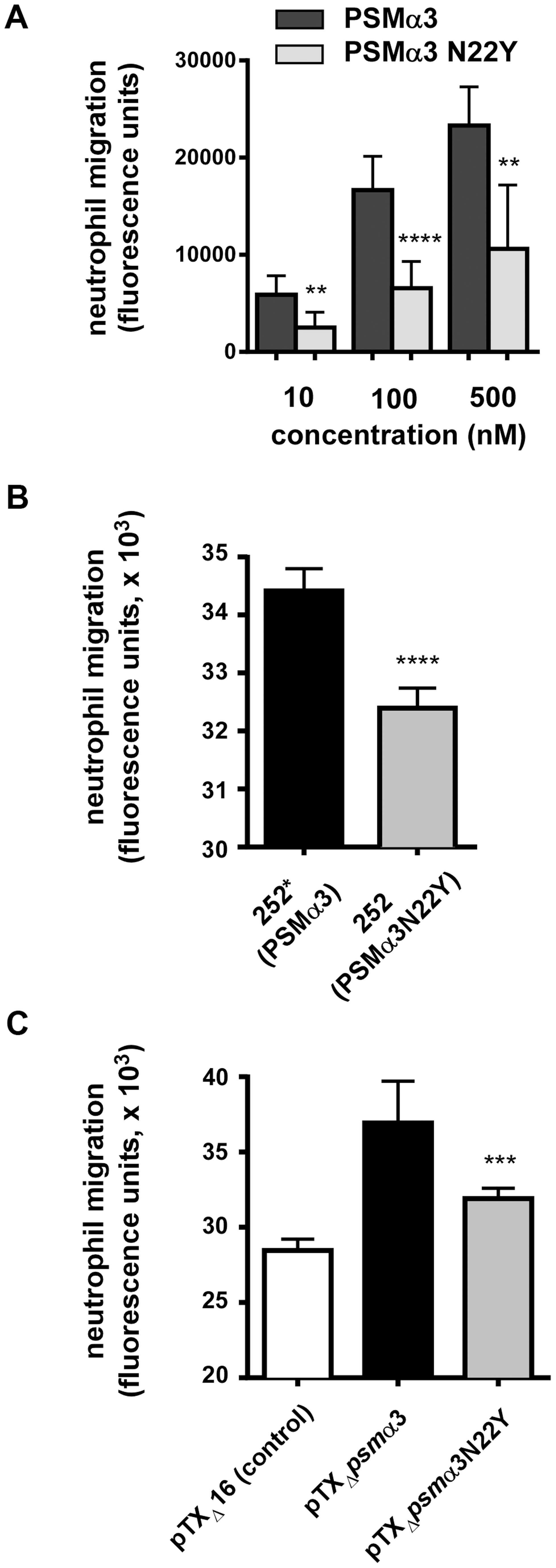 PSMα3N22Y has decreased chemotactic activity toward human neutrophils.