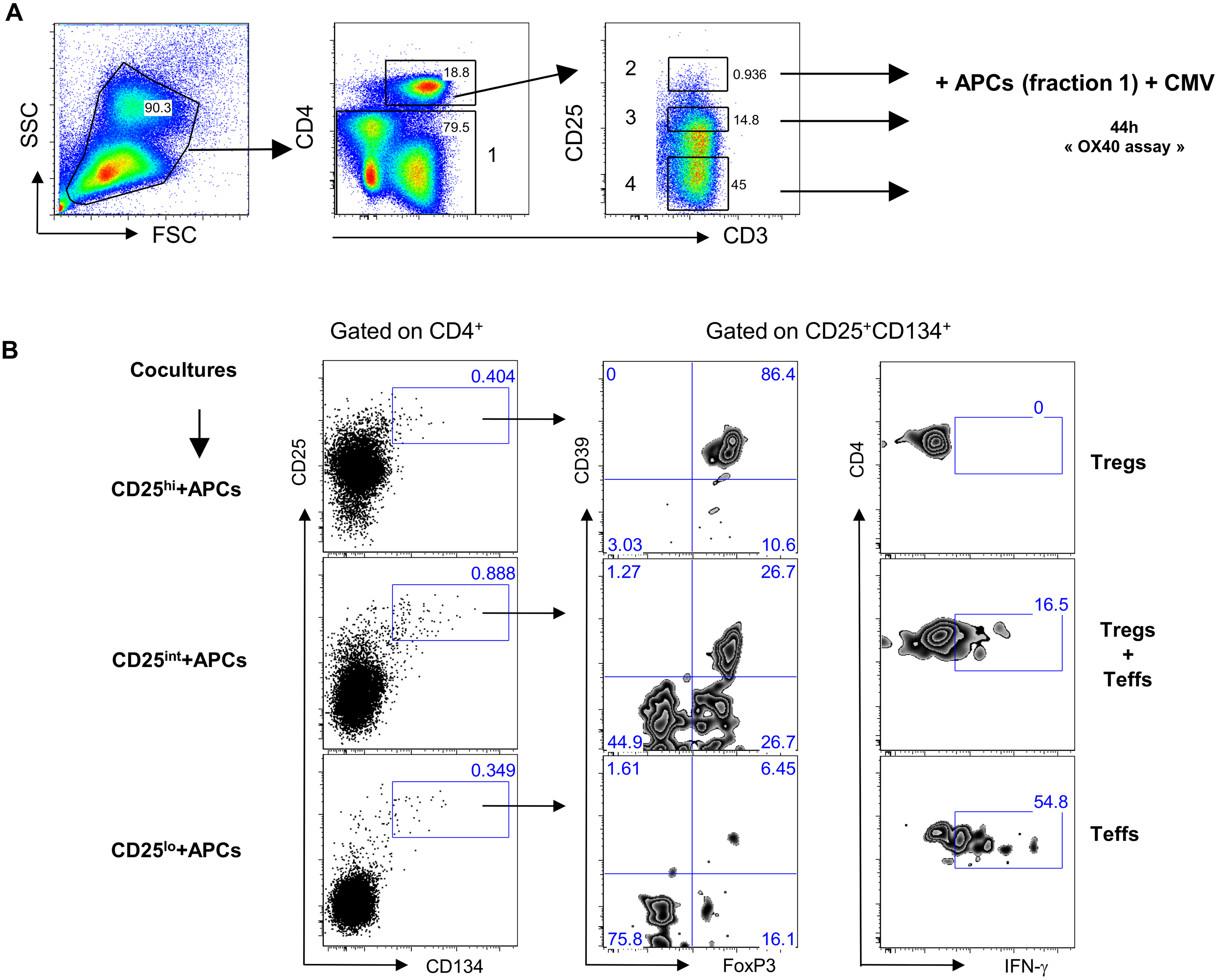 Antigen-specific Tregs originate from CD25<sup>hi</sup> cells.