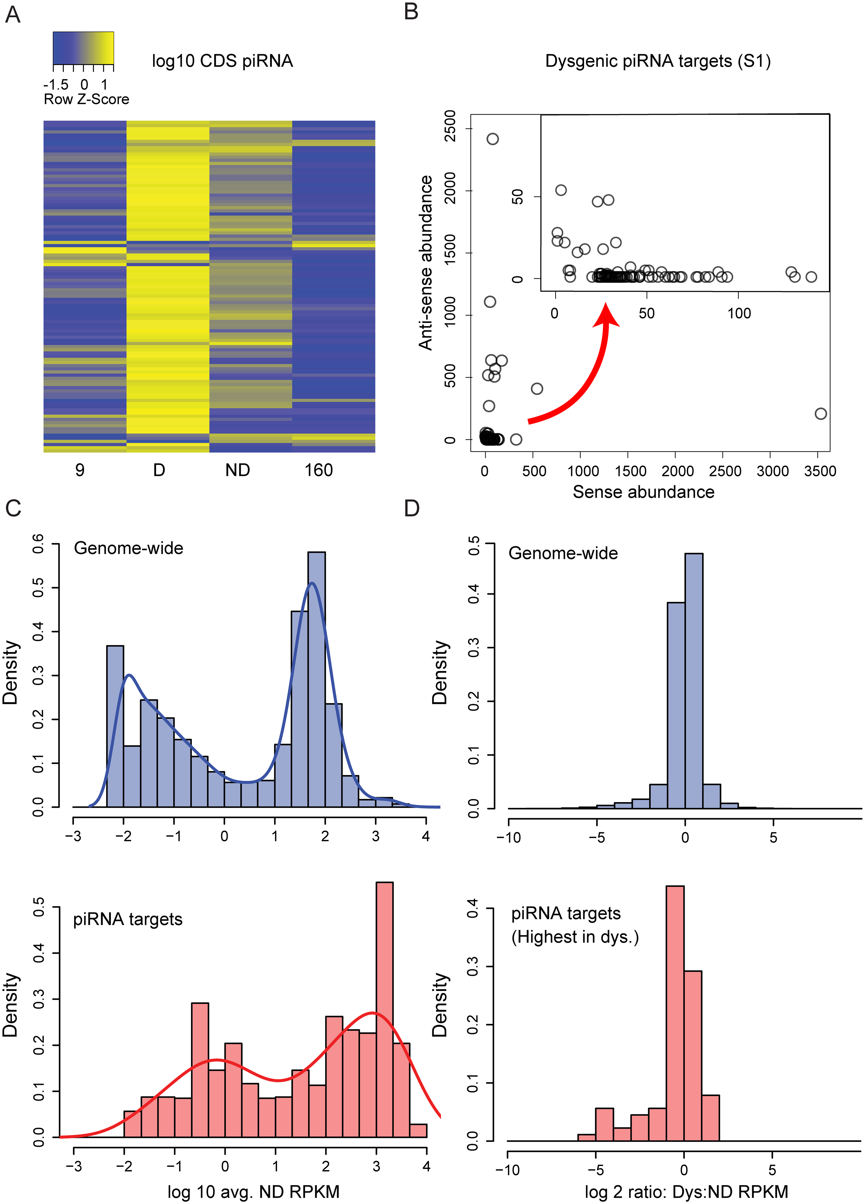 Genic piRNA targeting is increased in the dysgenic germline.