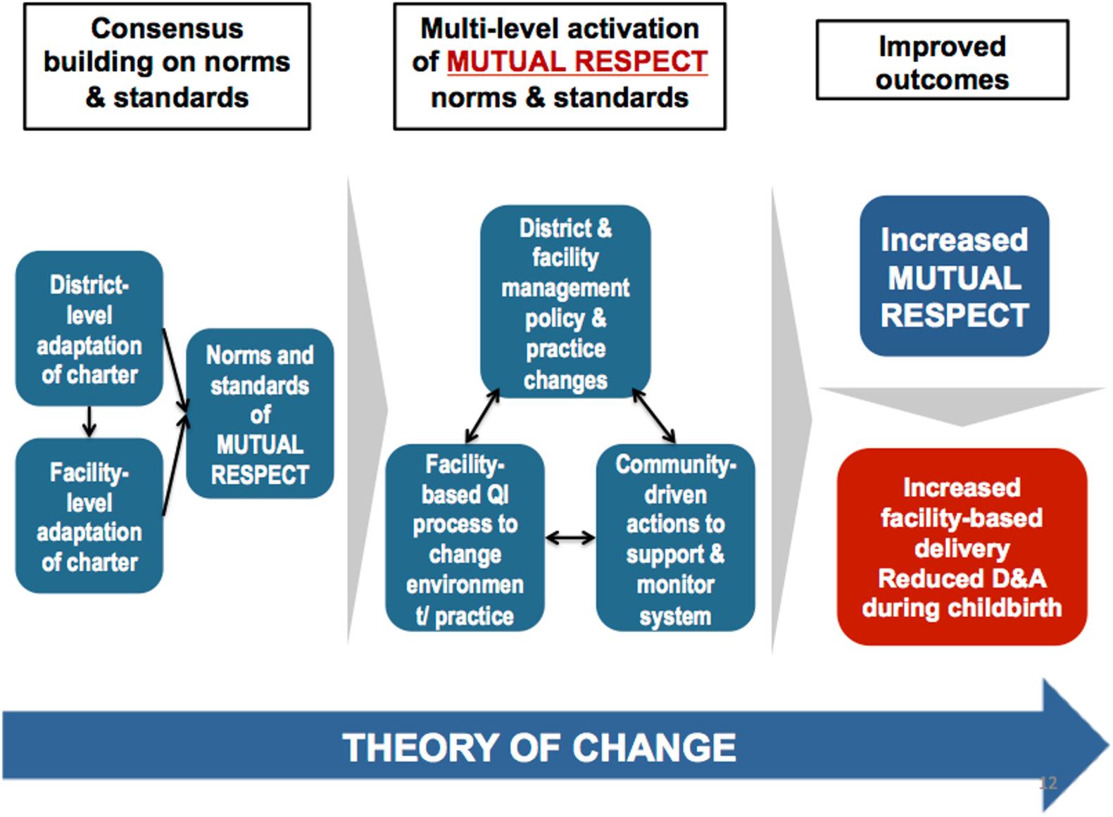 <i>Staha</i> project theory of change.