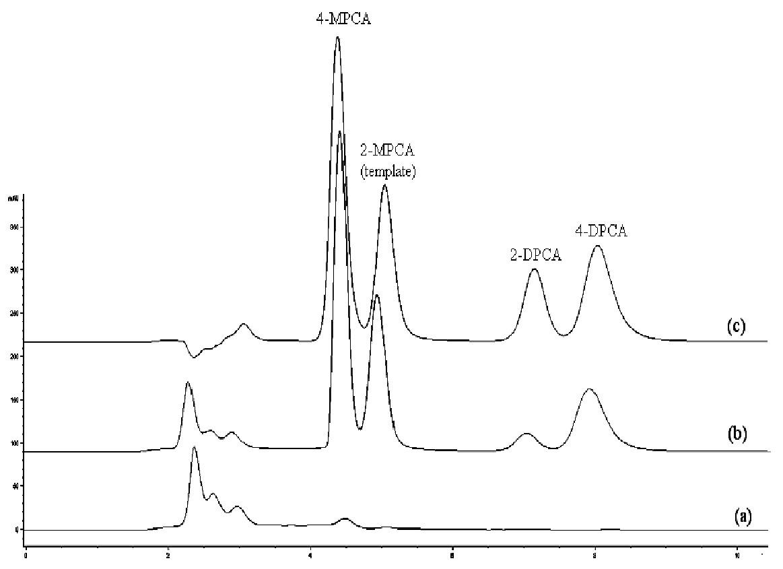 Chromatografické záznamy vzorky ľudskej plazmy bez pridania študovaných látok po SPE na MIP2 (a), vzorky ľudskej plazmy po pridaní študovaných látok (1 μg/ml) po SPE na MIP2 (b), zmes štandardov (metanolický roztok, 10 μg/ml každého analytu) (c) Kolóna: Separon SGX C18. Mobilná fáza: metanol/acetonitril/ kyselina octová/dietylamín (80/20/0.1/0.1, v/v/v/v), izokratická elúcia. Prietok 0,5 ml/min. Detekcia DAD, 240 nm. Dávkovaný objem 50 μl.
