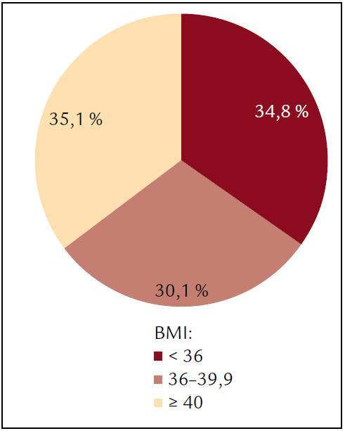 Rozložení BMI ve sledovaném souboru.