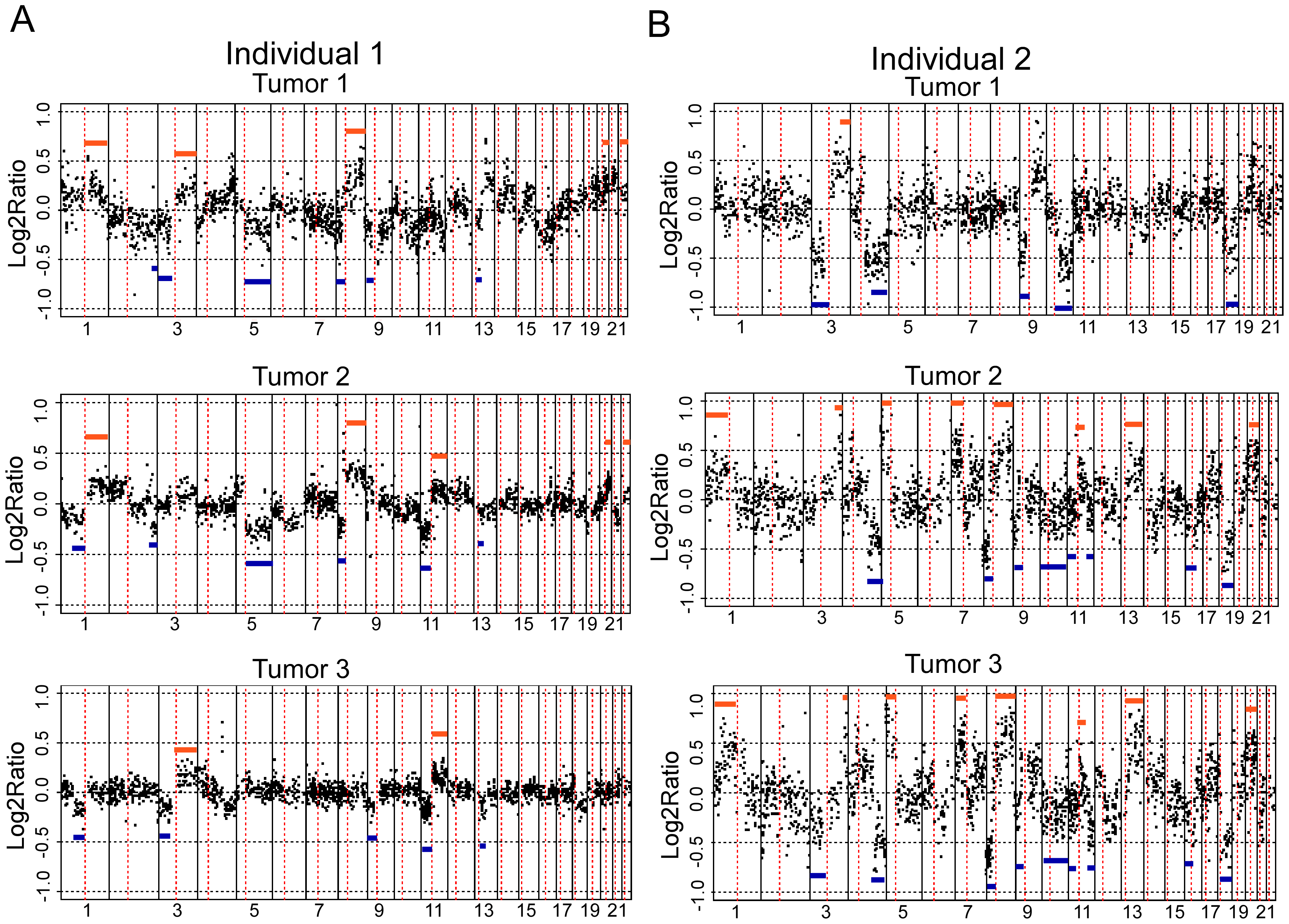 aCGH profiles of independent tumors from two individuals.