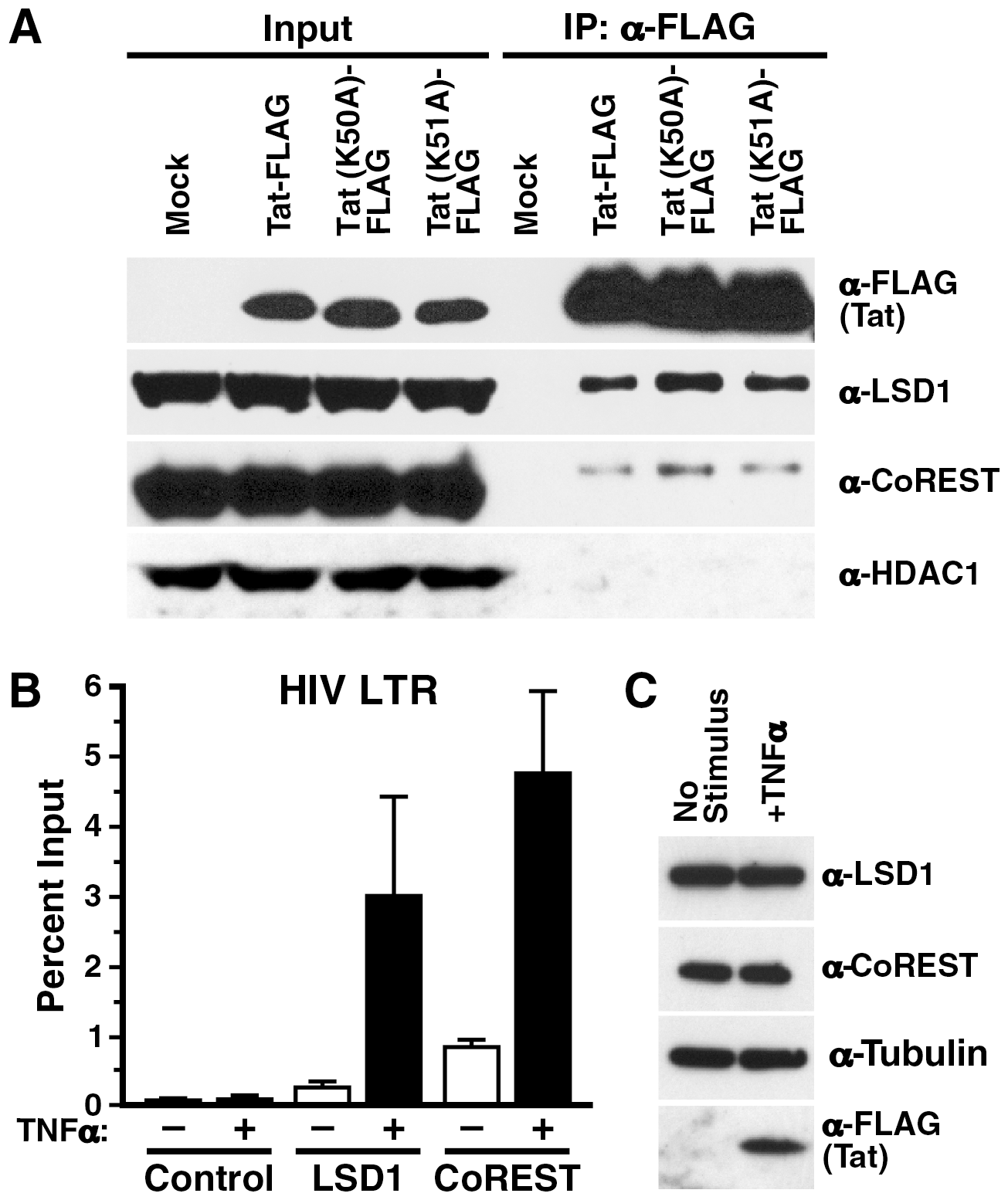 <i>In vivo</i> recruitment of LSD1 and CoREST to the HIV LTR.