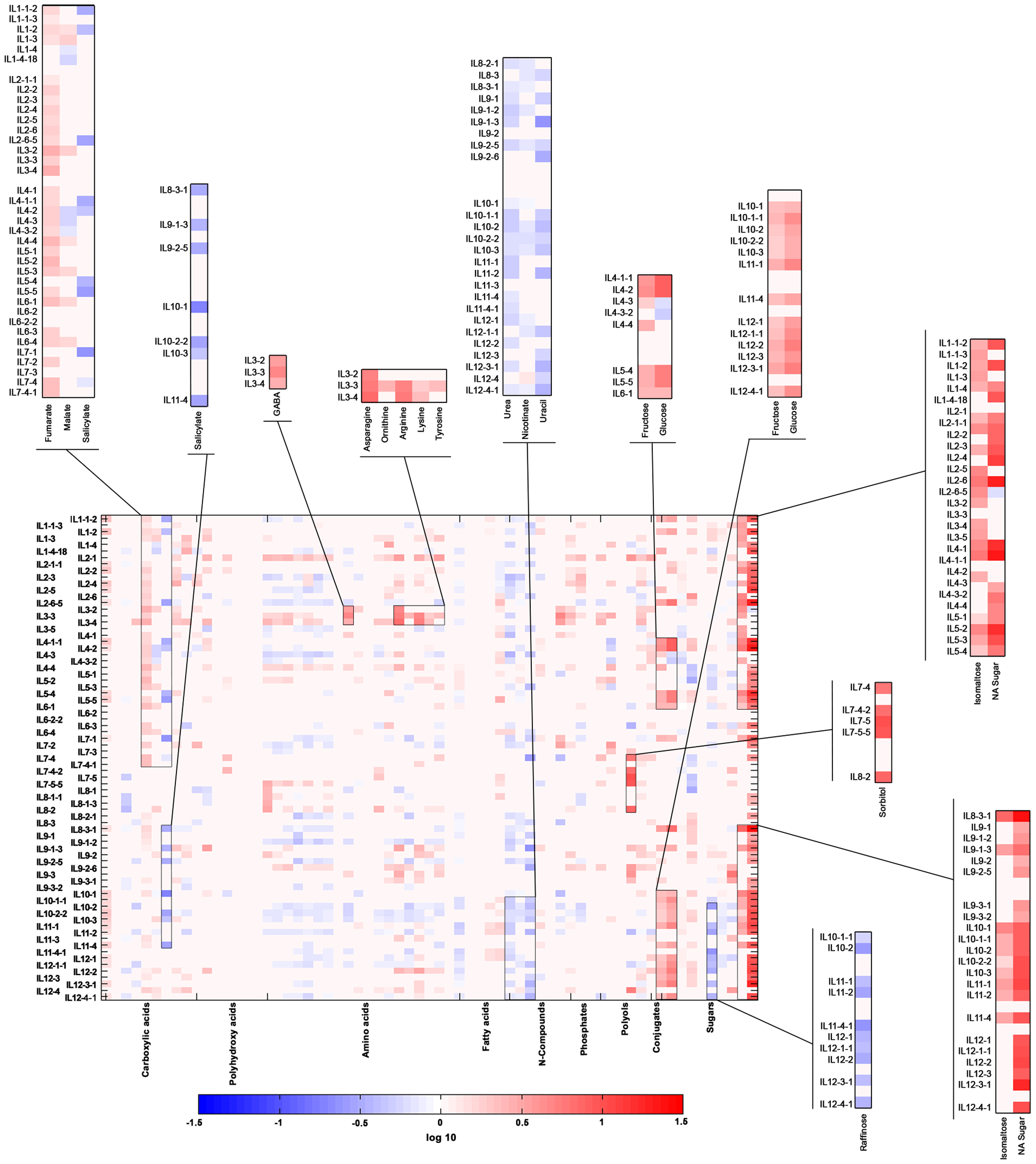 Heat map of metabolites measured across the IL collection during season I.