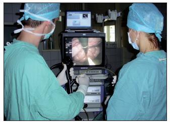 Transluminální chirurgická endoskopie (NOTES) u zvířete