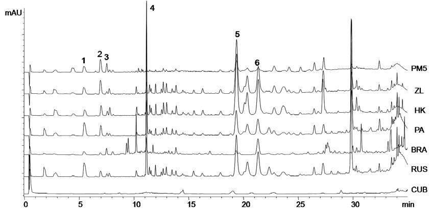 Chromatogramy vzorků propolisu z různých lokalit kyselina p-kumarová (1), kyselina ferulová (2), kyselina benzoová (3), kyselina skořicová (4), chrysin (5), galangin (6)