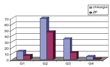 Předléčebný stupeň diferenciace spinaliomu G.