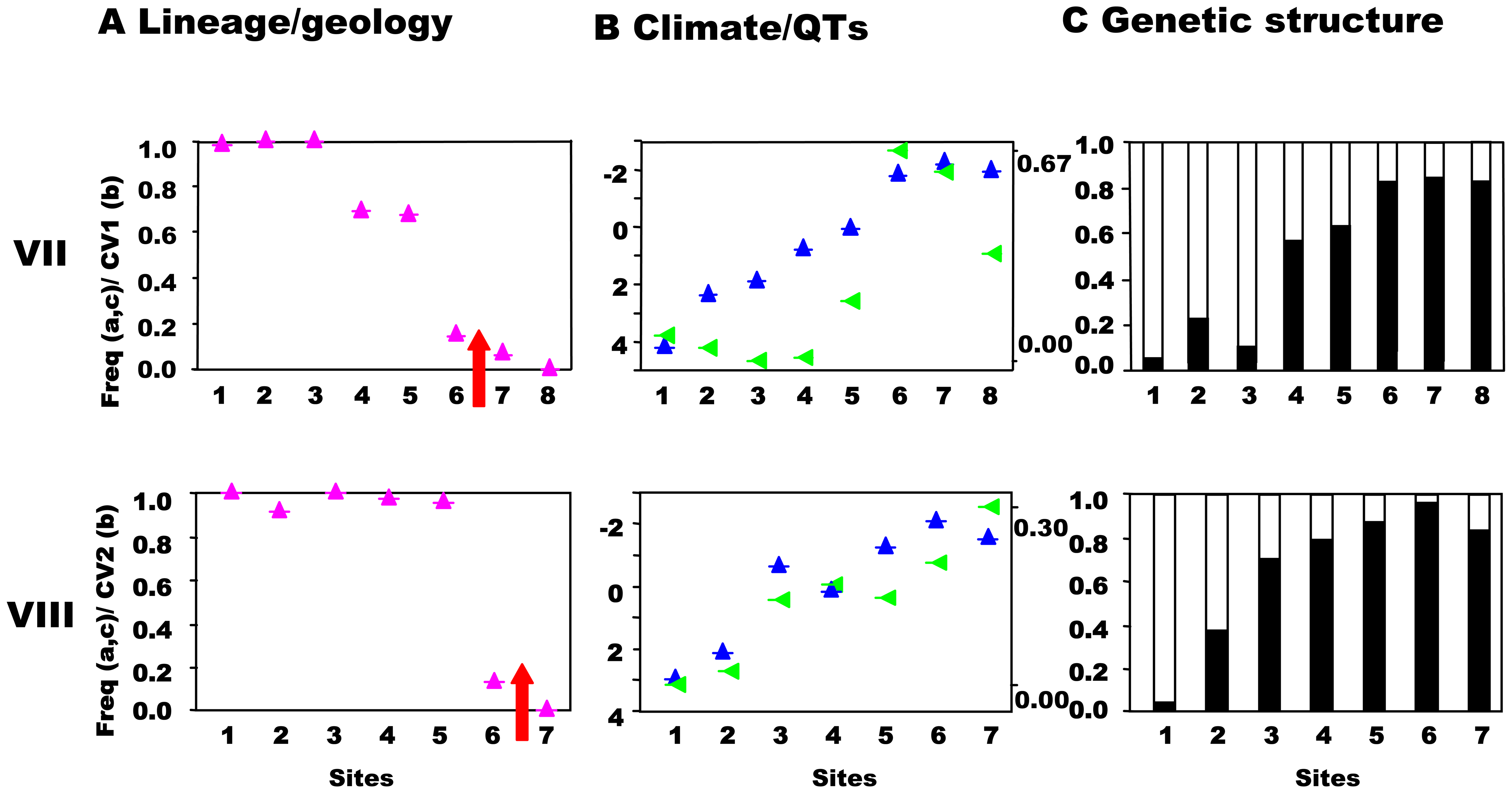 South-central precursor islands: lineages, quantitative traits, and genetic structure along transects.