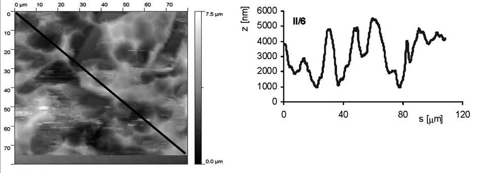 AFM vzorku II/6 (pískovaný zrnitostí 120 a leptaný s povrchovou ztrátou materiálu 0,03 mm). Snímek povrchu a jeho profil ve směru úhlopříčky, naznačené ve snímku, byl měřen pomocí AFMmikroskopu Explorer III (Veeco, Santa Barbara, Kalifornie,USA).