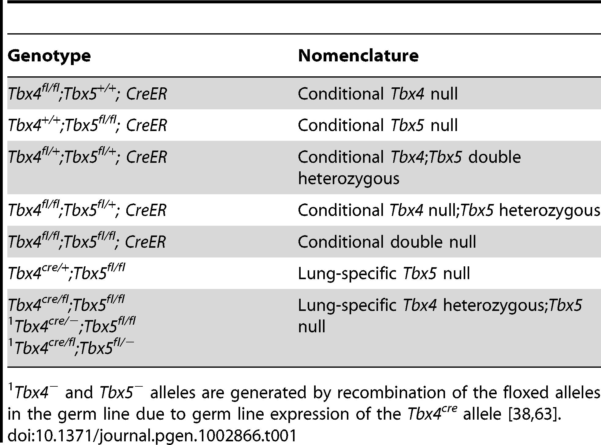 Different allelic combinations and the descriptive nomenclature.