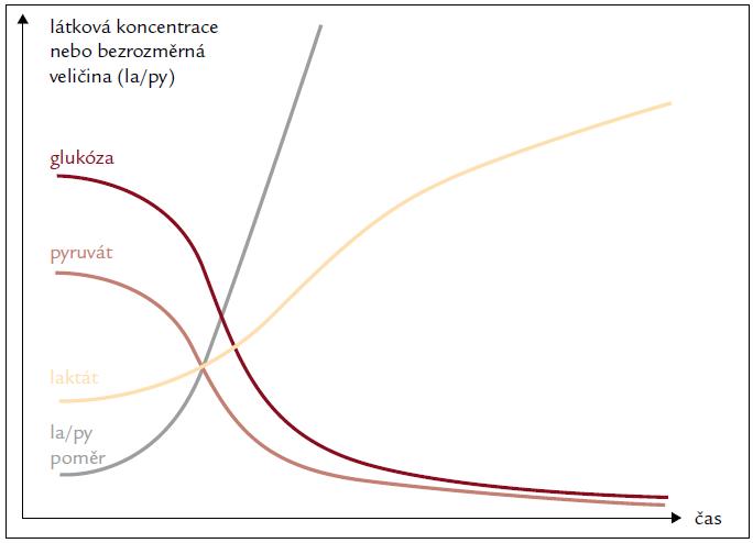 Typická dynamika základních metabolických indikátorů v mikrodialyzátu při tkáňové ischemii. Paralelní měření glykemie umožňuje odlišit systémové změny od lokální hypoperfuze nebo mitochondriální dysfunkce.