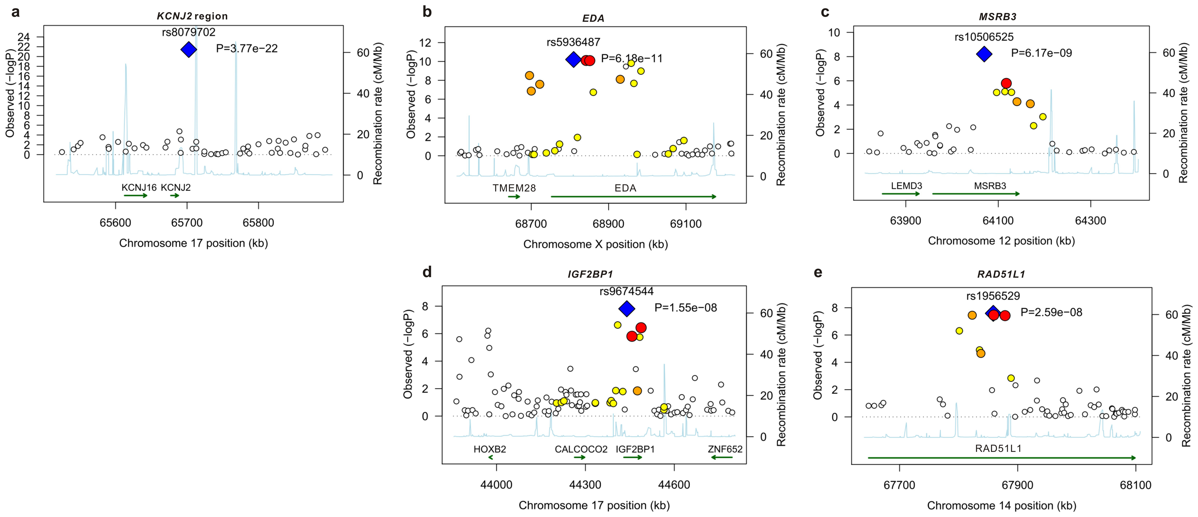 Linkage disequilibrium and association at loci reaching genome-wide significance for primary tooth development in meta-analysis of NFBC1966 and ALSPAC.