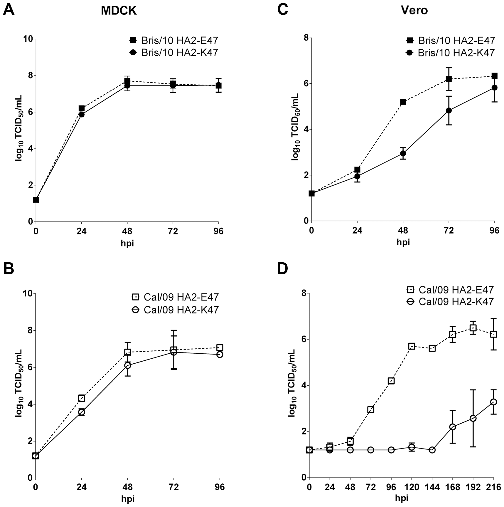 Growth kinetics of H1N1pdm viruses with HA2-E47 or K47 in MDCK and Vero cells.
