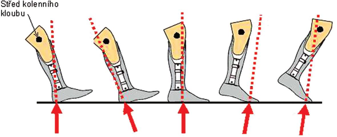 Velikost a směr reakční síly ve stojné fázi kroku.