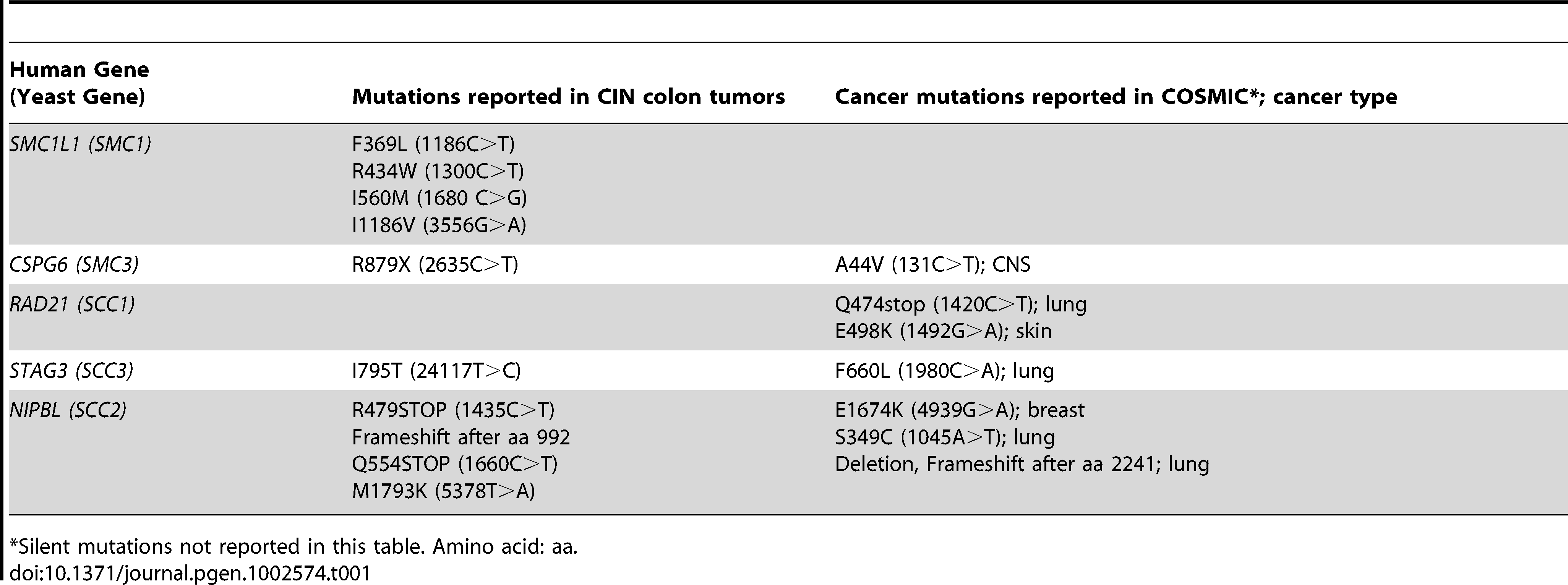 Mutations in cohesin genes seen in tumors.