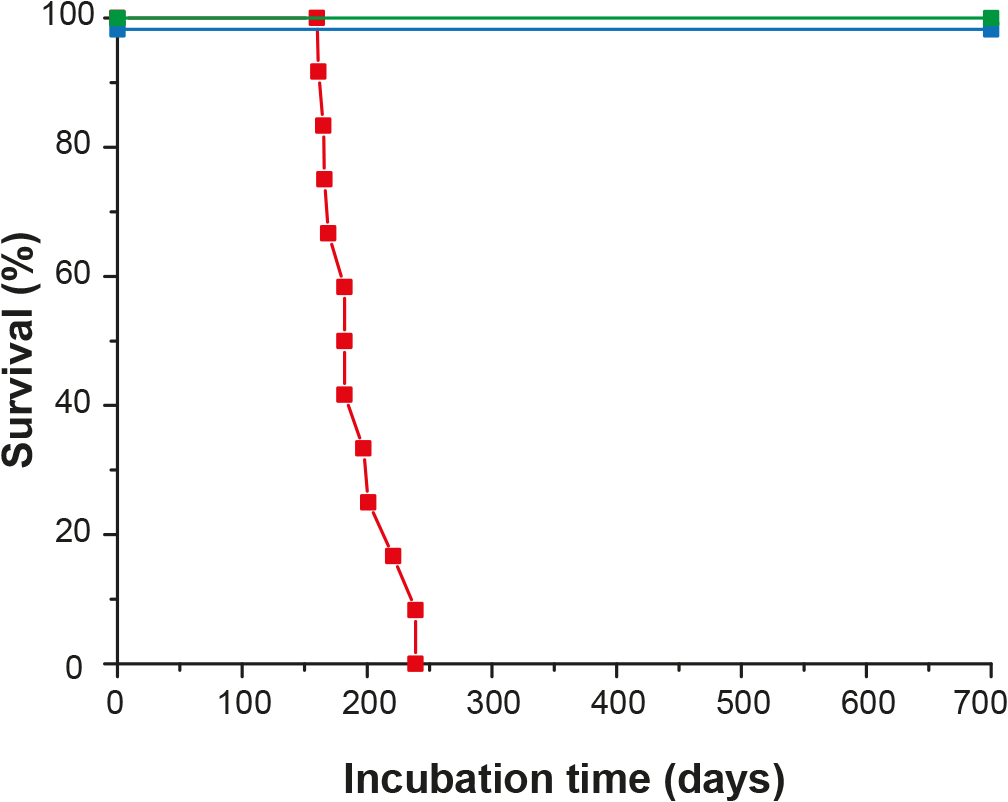 Survival time of ovine PrP transgenic rabbits infected with scrapie.
