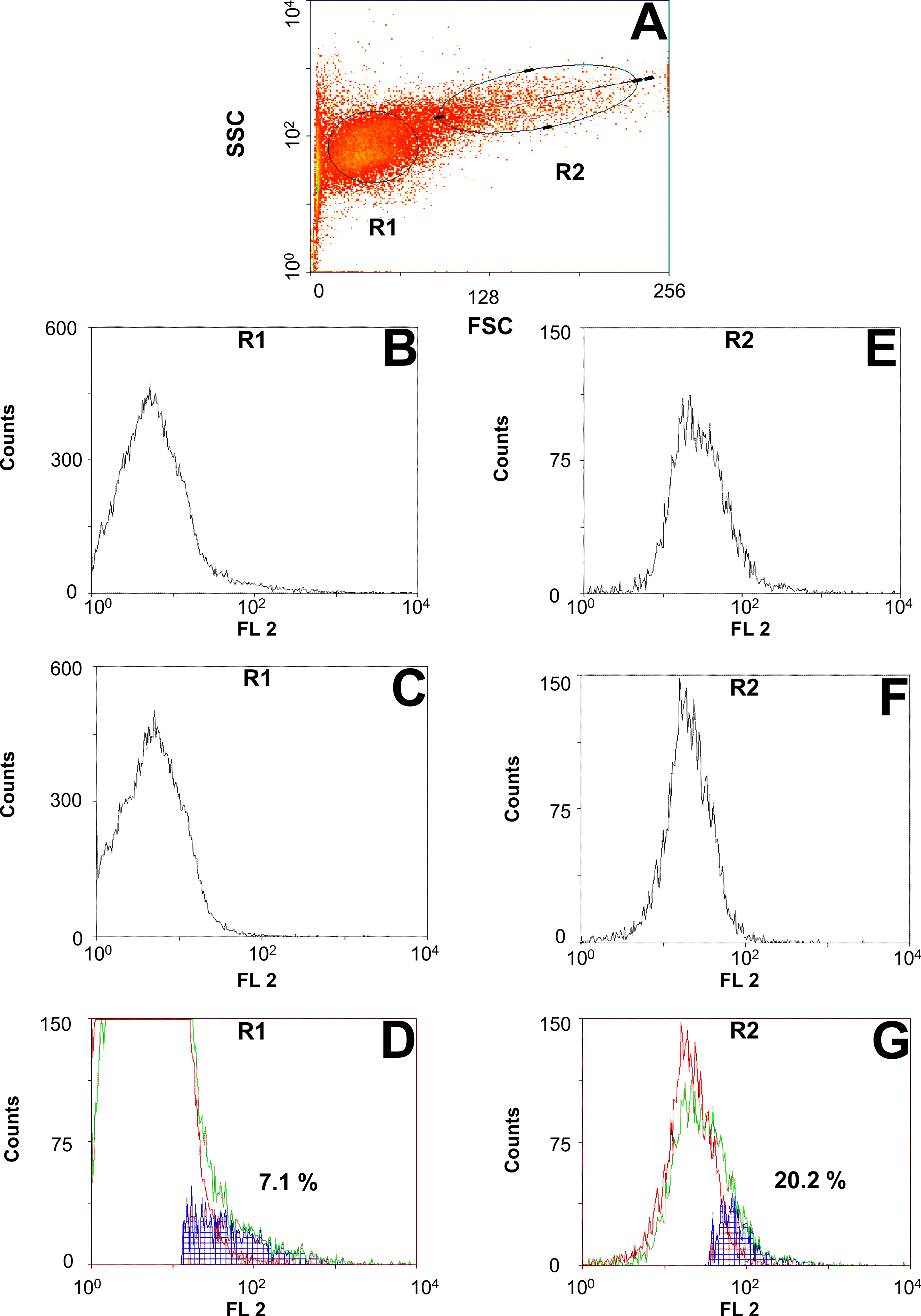 Flow cytometric analysis of Pgp expression on the surface of AD1-7<i>Ceg</i>Pgp-9V5His yeast cells.