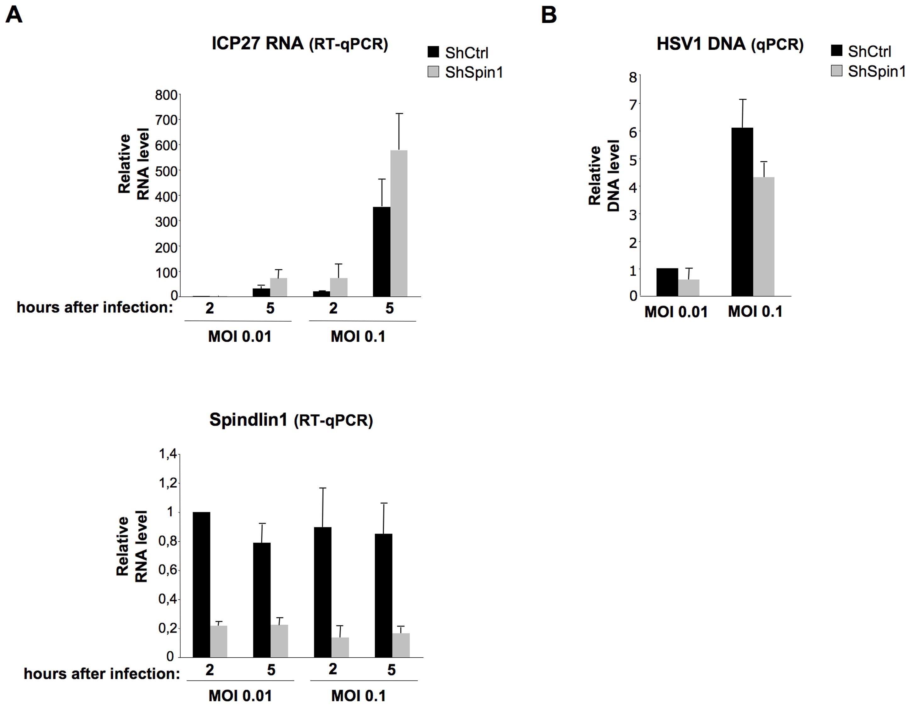 Spindlin1 represses the transcription of HSV-1 during infection.
