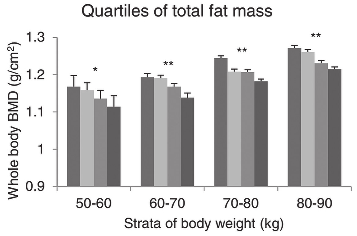 Fig. 2 Values of whole body bone mineral density (BMD) in relation to total fat mass. Least-squares means (standard error) of the BMD adjusted for age and height, across quartiles of body compositions in 10-kg strata of body weight. The bars from left to right are quartiles 1, 2, 3 and 4 of body composition. Significance of trends: *p<0.01; *p<0.001. From [3] with permission.