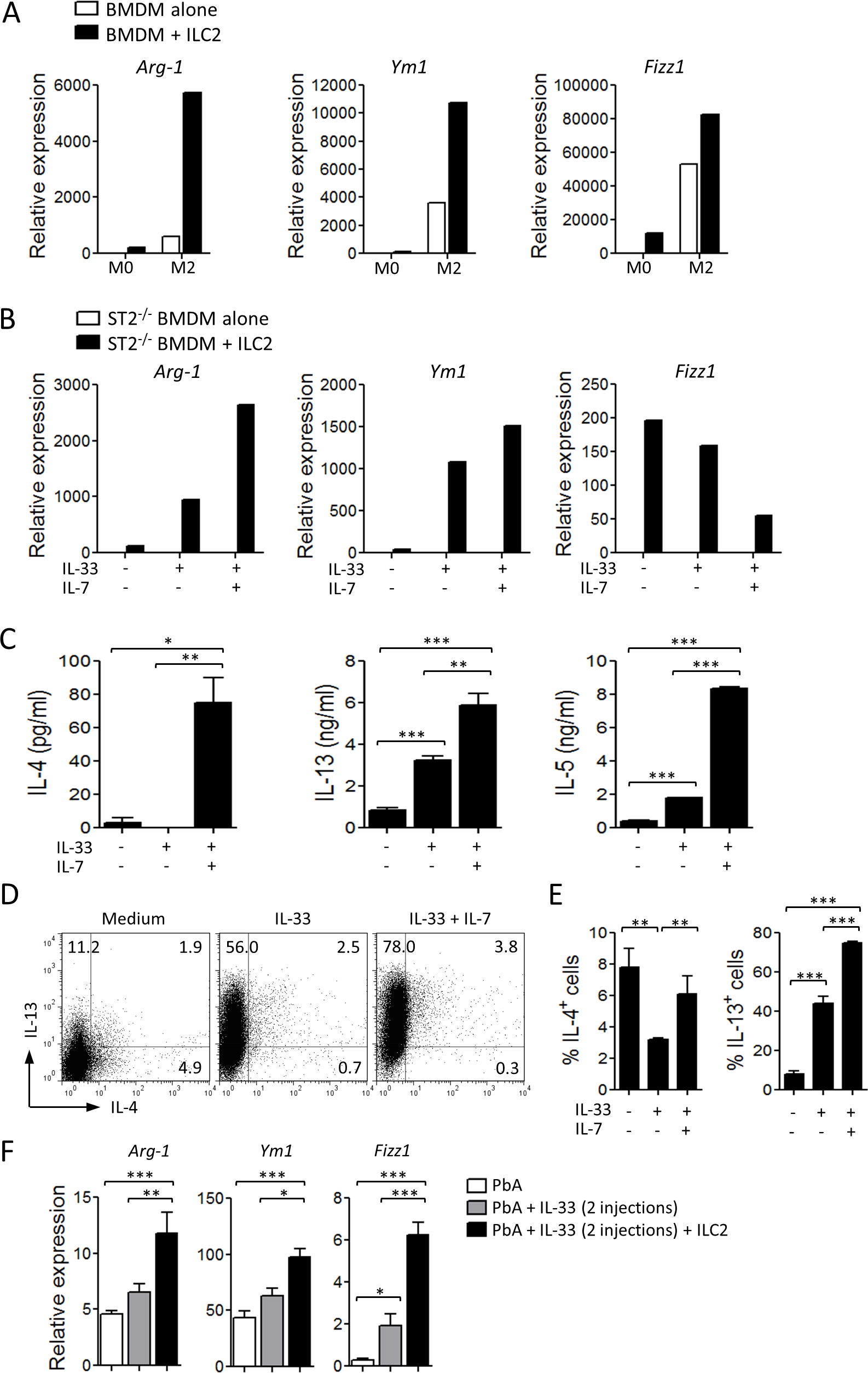 ILC2 promote M2 macrophage polarization.