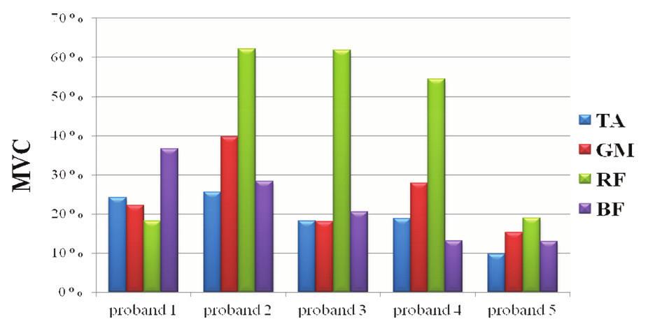 Grafické znázornění normovaných hodnot EMG aktivity vybraných svalů u všech probandů při chůzi na suchu.