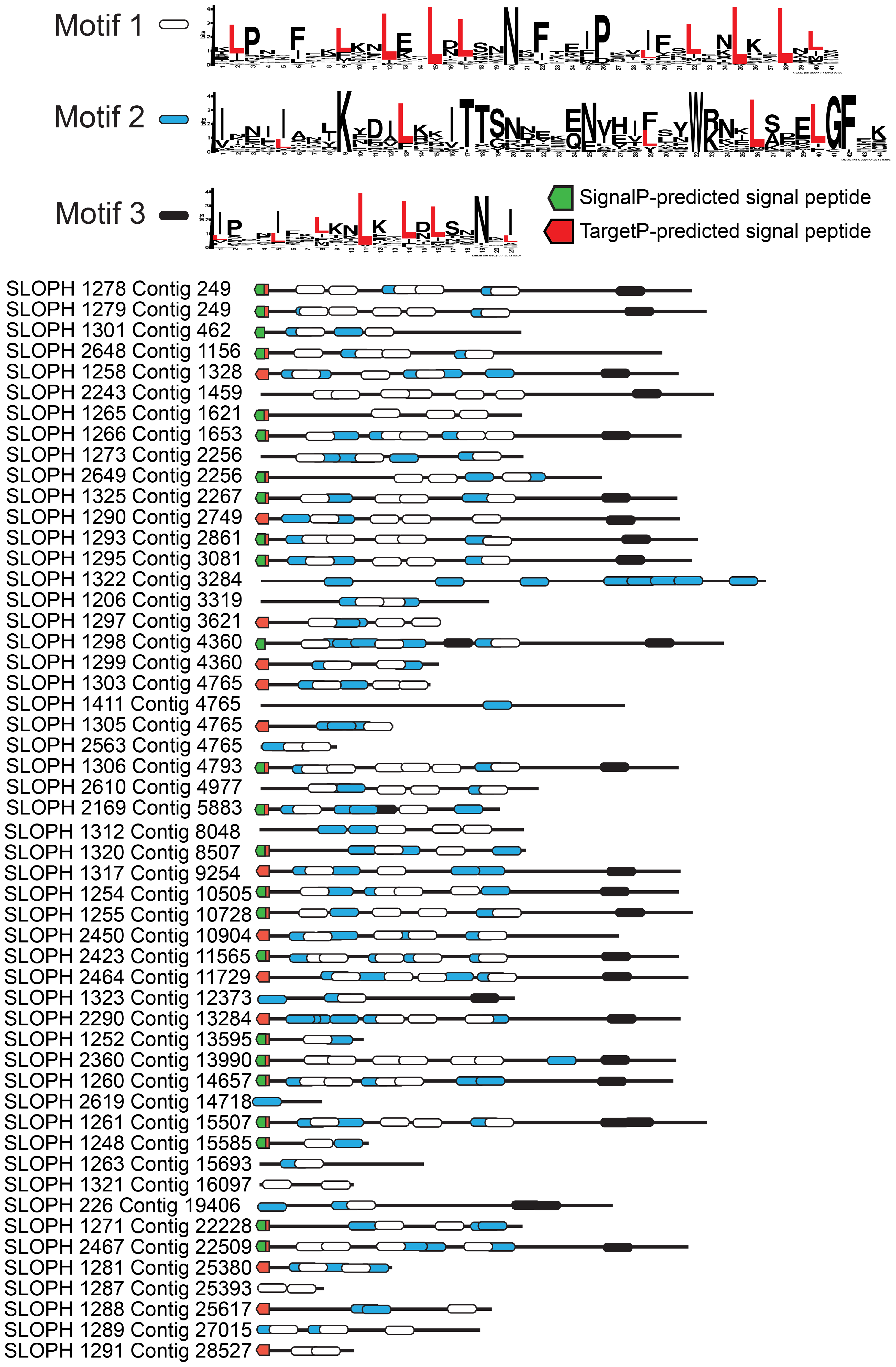 An expanded family of 52 complete leucine-rich repeat proteins in the <i>S. lophii</i> genome.
