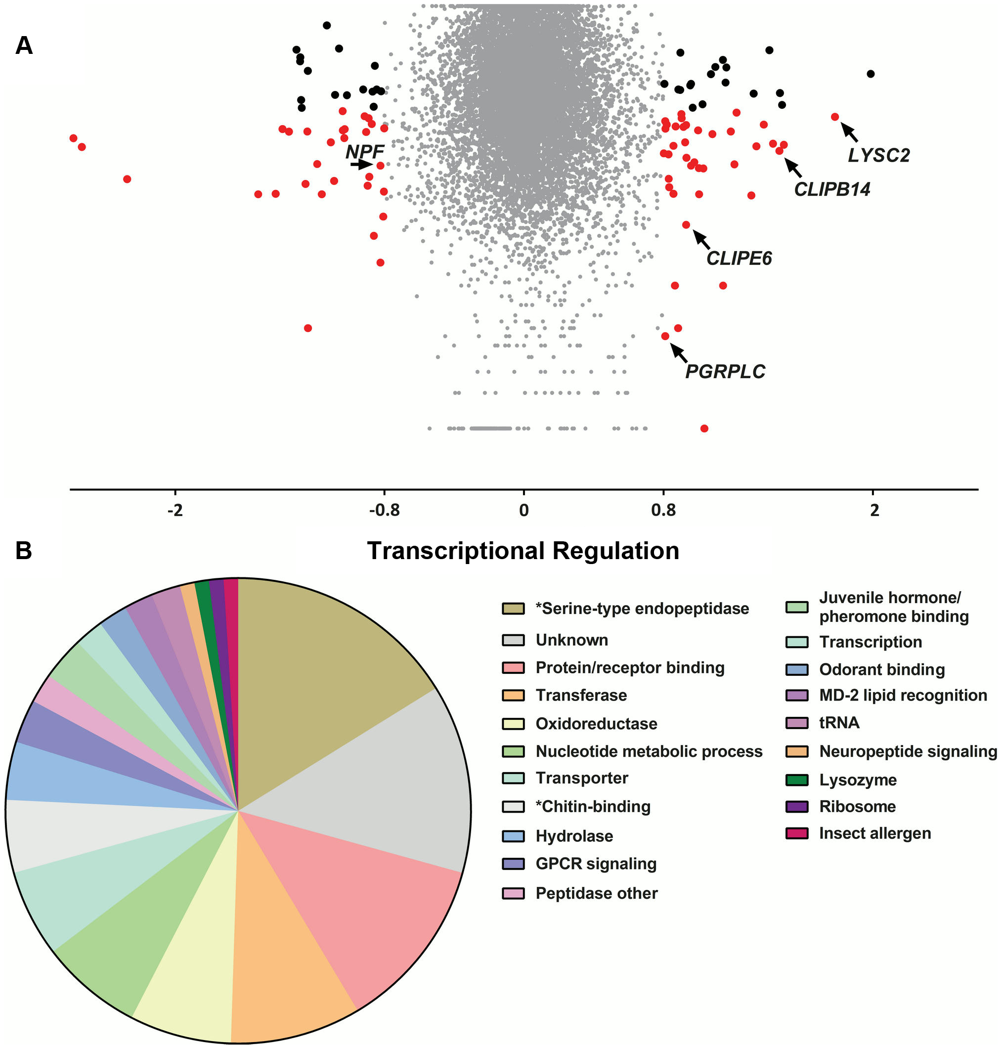 Transcriptional regulation following <i>S. marcescens</i> infection using DNA microarrays.