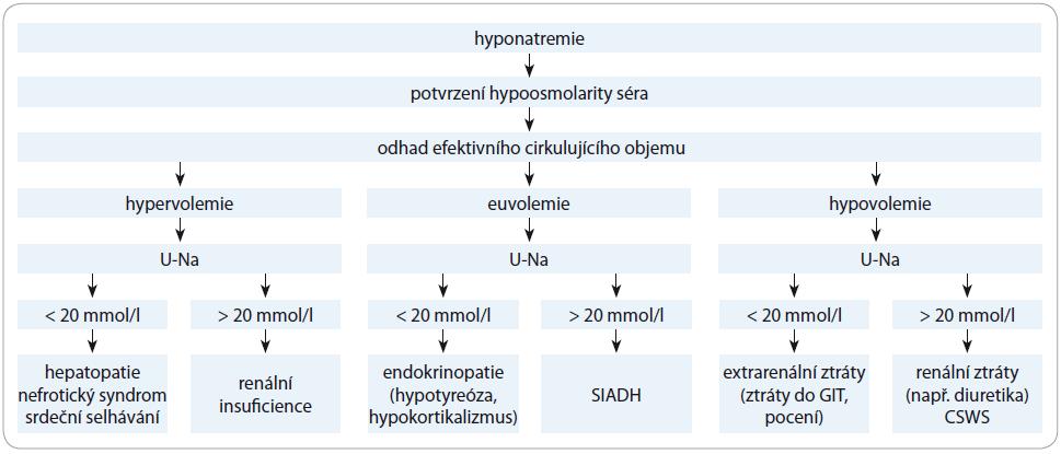 Schéma 1. Diferenciální diagnostika hyponatremie – praktický návod.