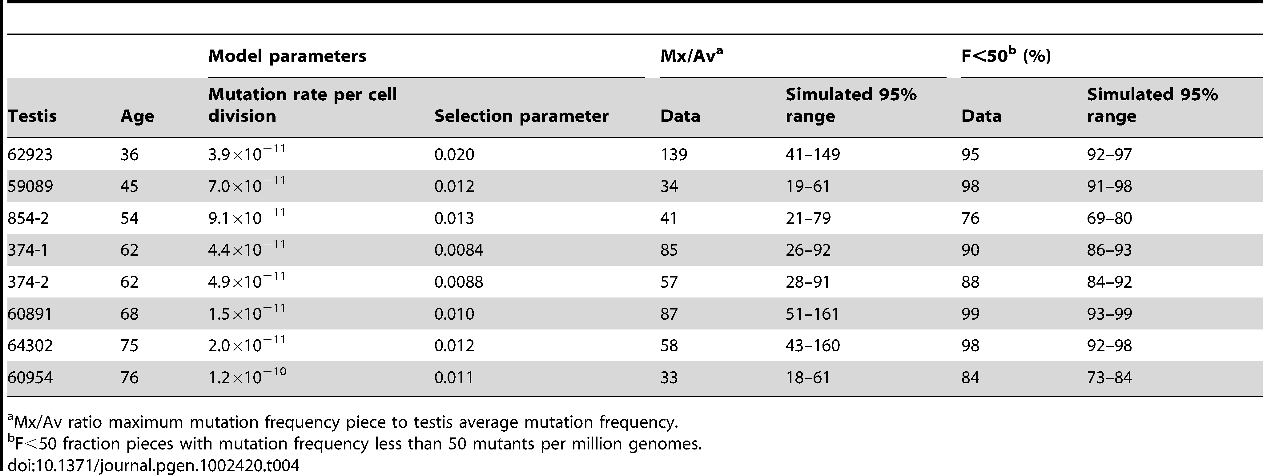 Selection model incorporating cell death model parameters and simulation results for those testes with substantial MEN2B mutation clusters.