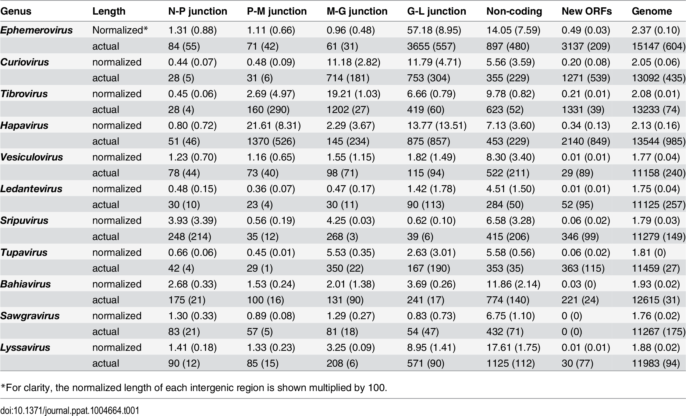 Averages (standard deviation) of the actual lengths of each genome region (nt), and the normalized lengths relative to the length of the L gene.