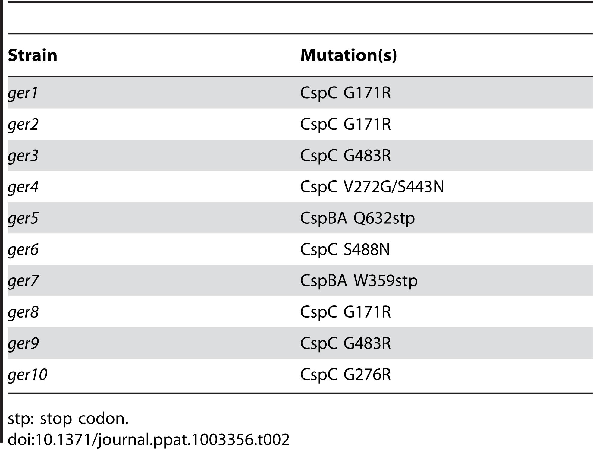 Locations of <i>C. difficile cspBAC</i> mutations in the <i>ger</i> mutants.