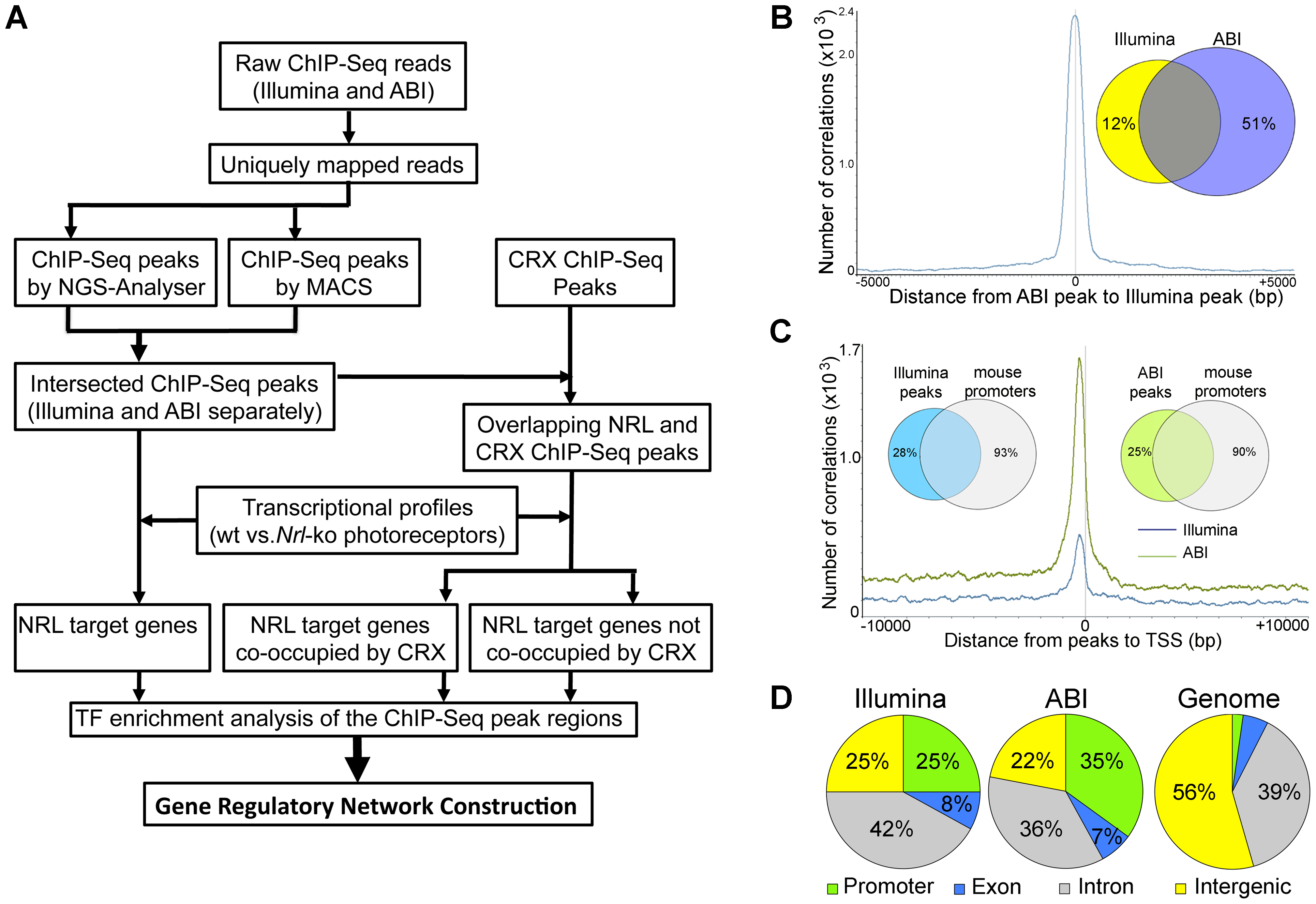 Genome-wide Occupancy of NRL revealed by ChIP–Seq using Illumina and ABI/SOLiD sequencing platforms.