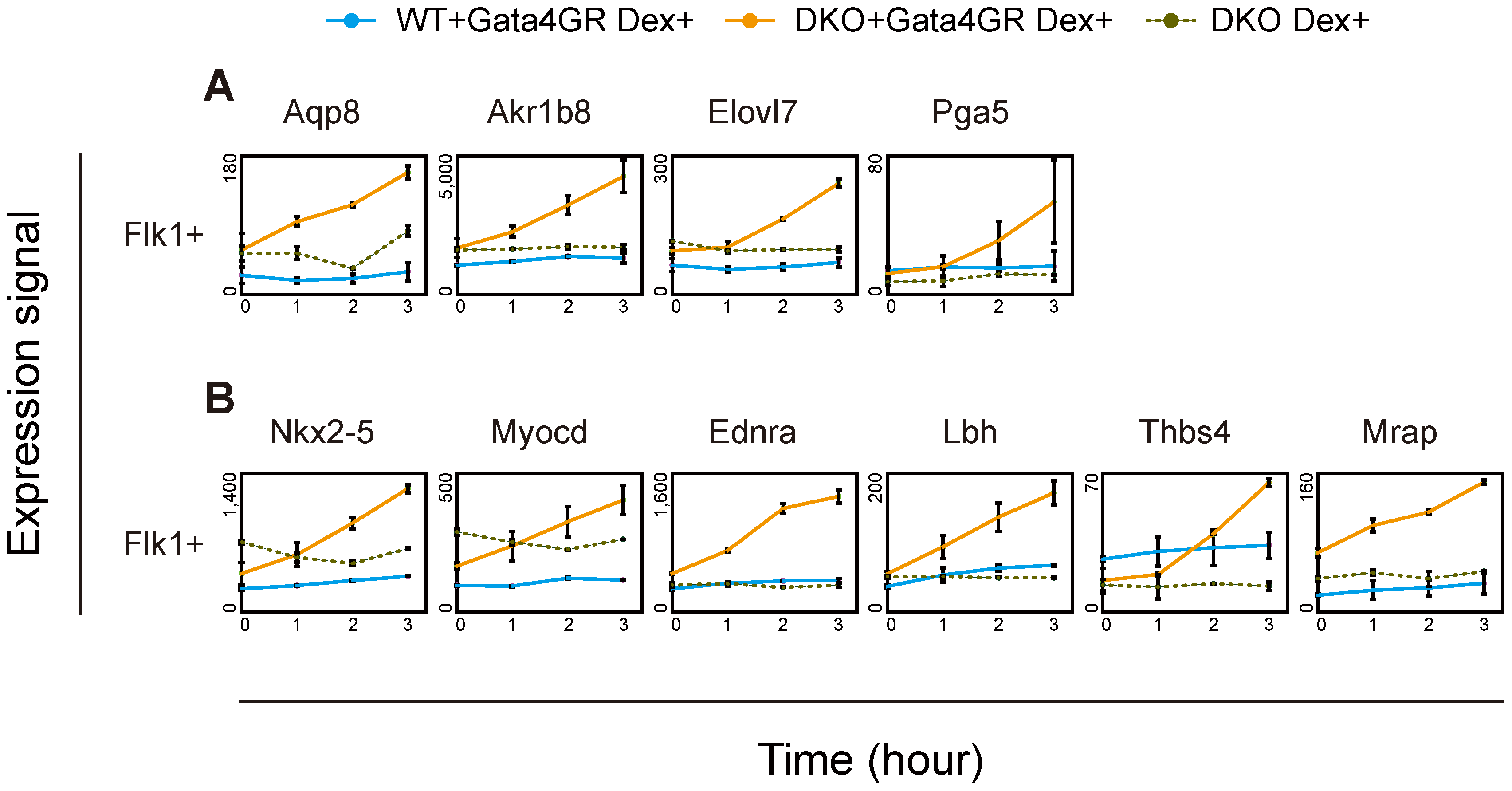 Immediate response to Gata4 in DKO Flk1(+) mesoderm cells.