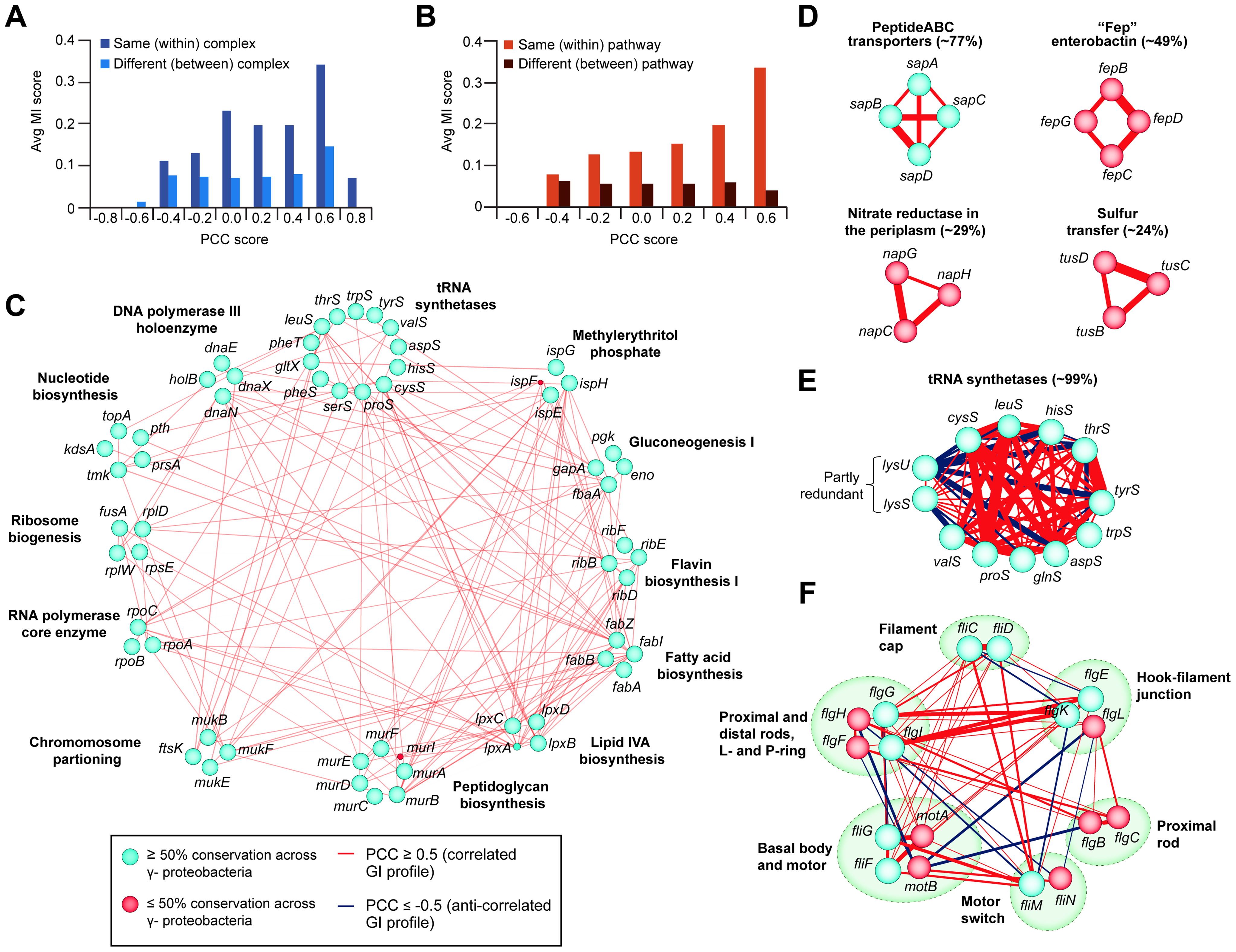 Correlated GI profiles of co-conserved genes and modules.