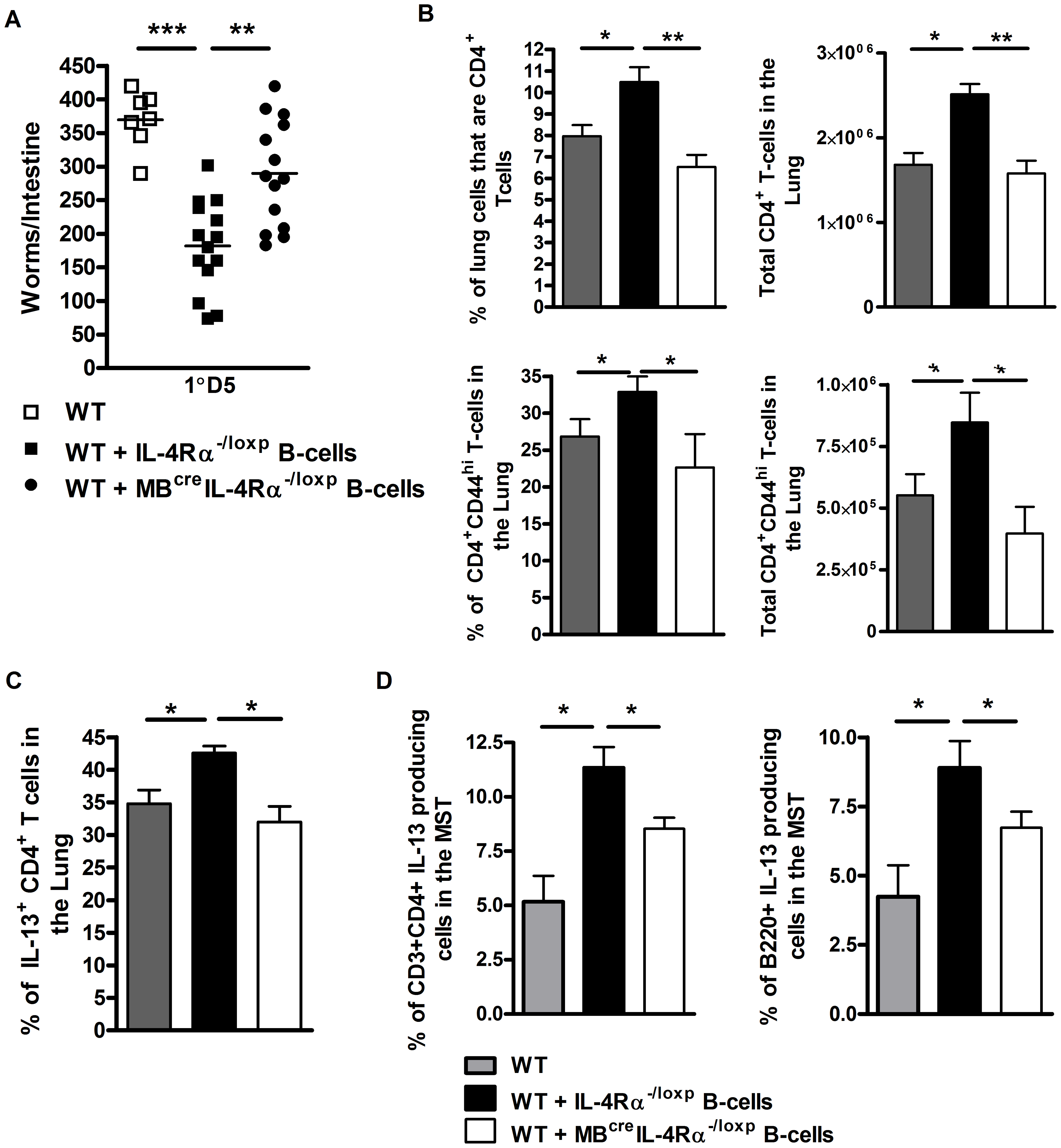 Rapid IL-Rα dependent B cell mediated protection against <i>N. brasiliensis</i> occurs in the lung.
