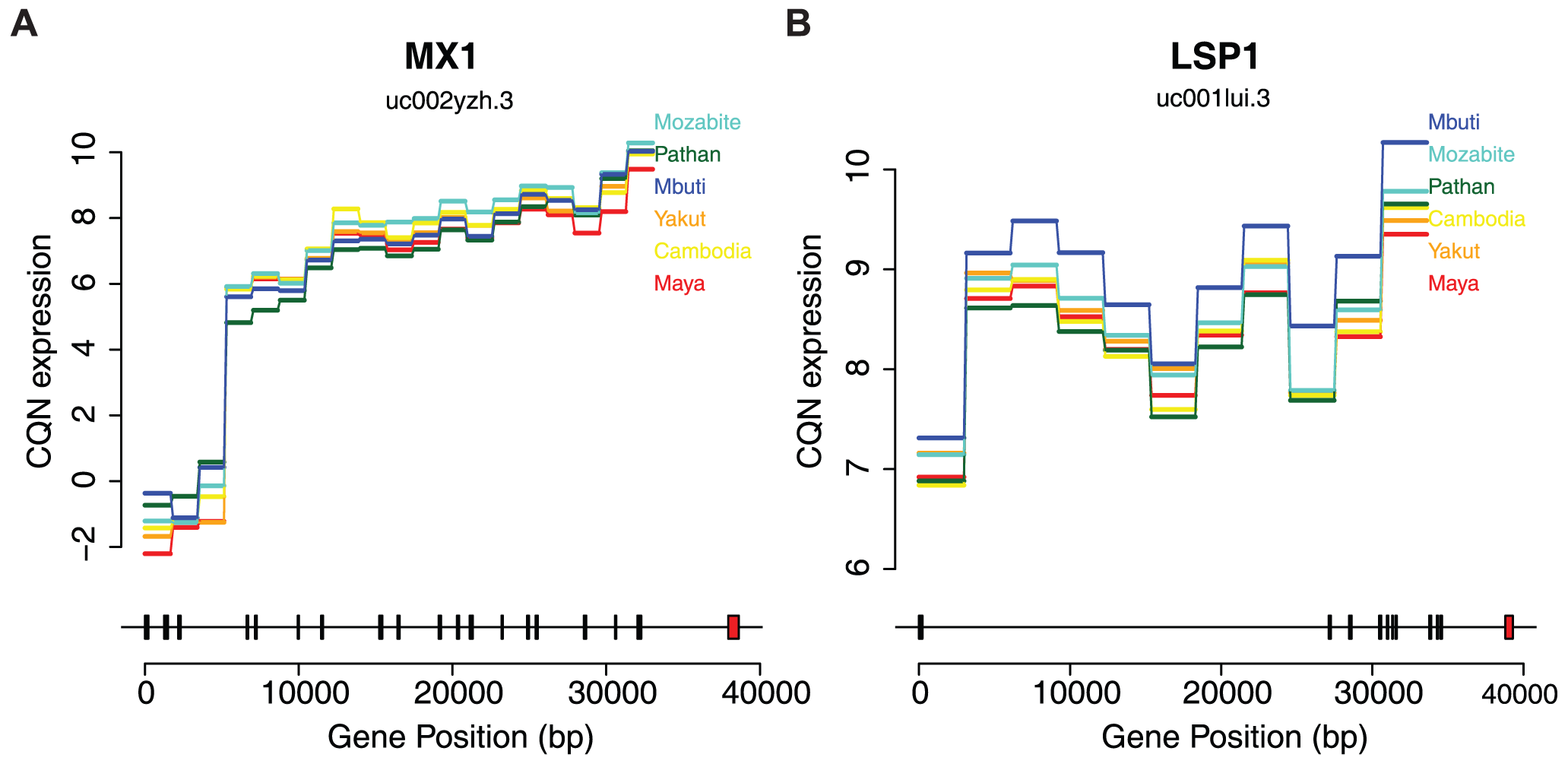 Differential expression across human populations.