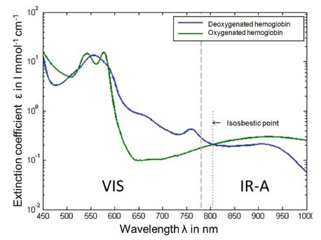 Fig. 3: Extinction coefficient of oxygenated and deoxygenated hemoglobin.