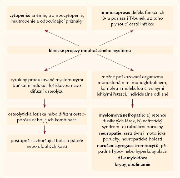 Schéma 1. Příznaky mnohočetného myelomu.