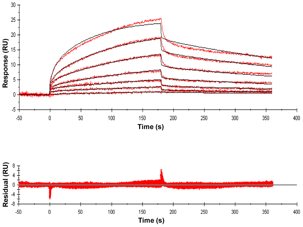 Sensorgrams of a compound with relatively high binding affinity for ED-PknB.