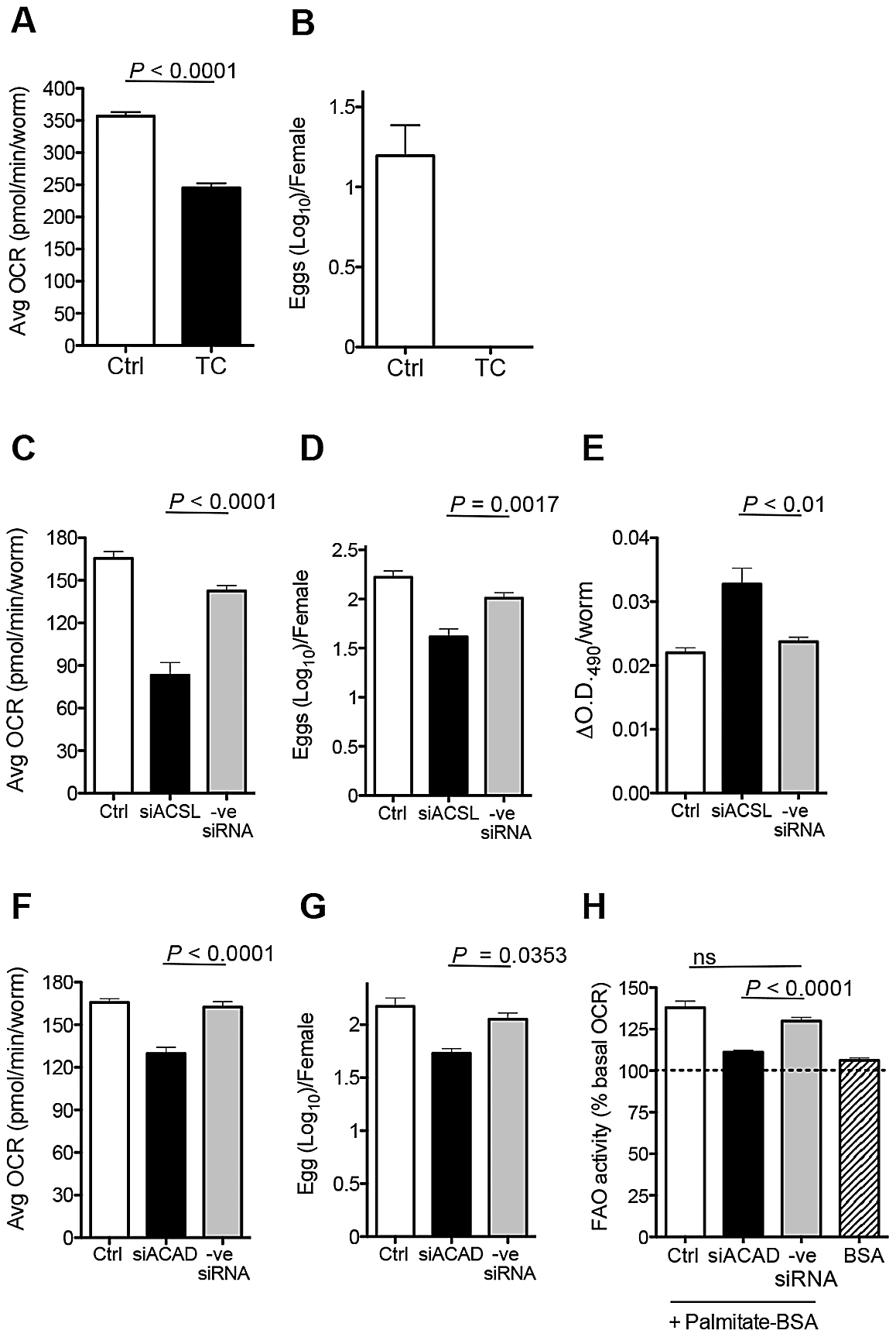 Loss of ACSL and ACAD function inhibits egg production.