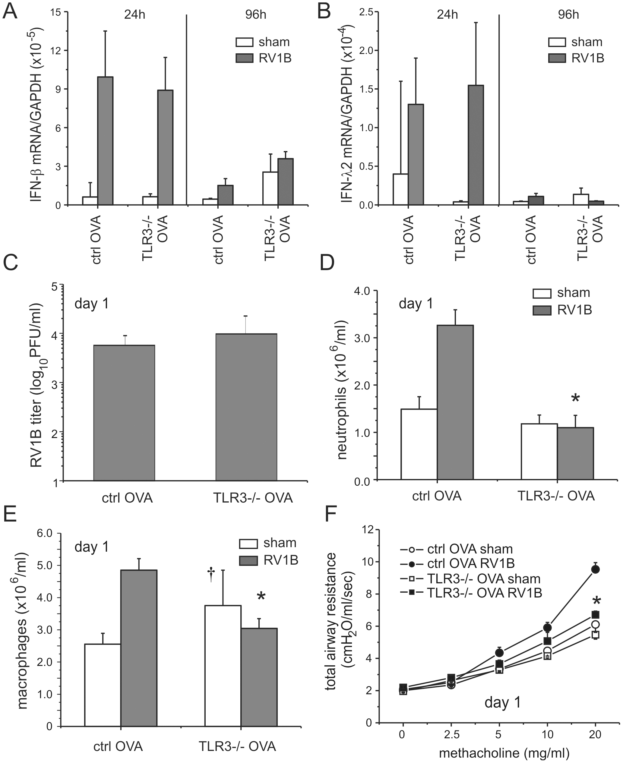 Airway responses in RV1B-infected, OVA-sensitized and -challenged TLR3 null mice.