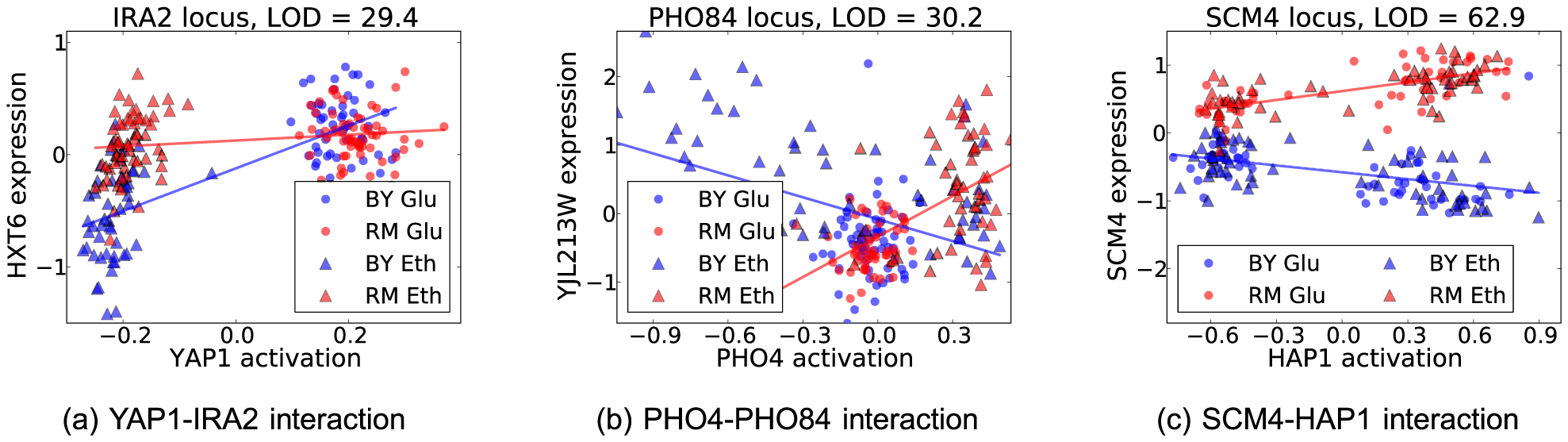 Three broad classes of interaction effects between locus genotype and transcription factor activation affecting gene expression (for details see text).