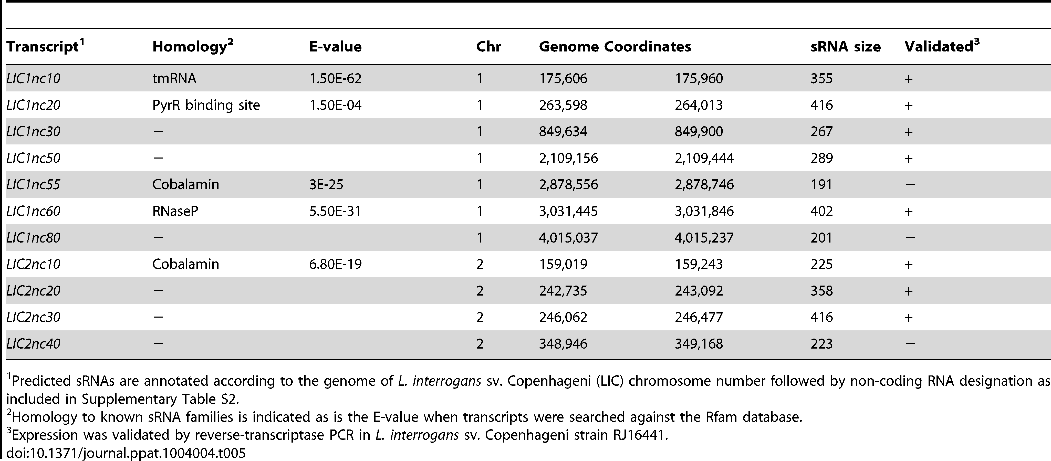 Candidate small non-coding RNAs identified by RNA-Seq.