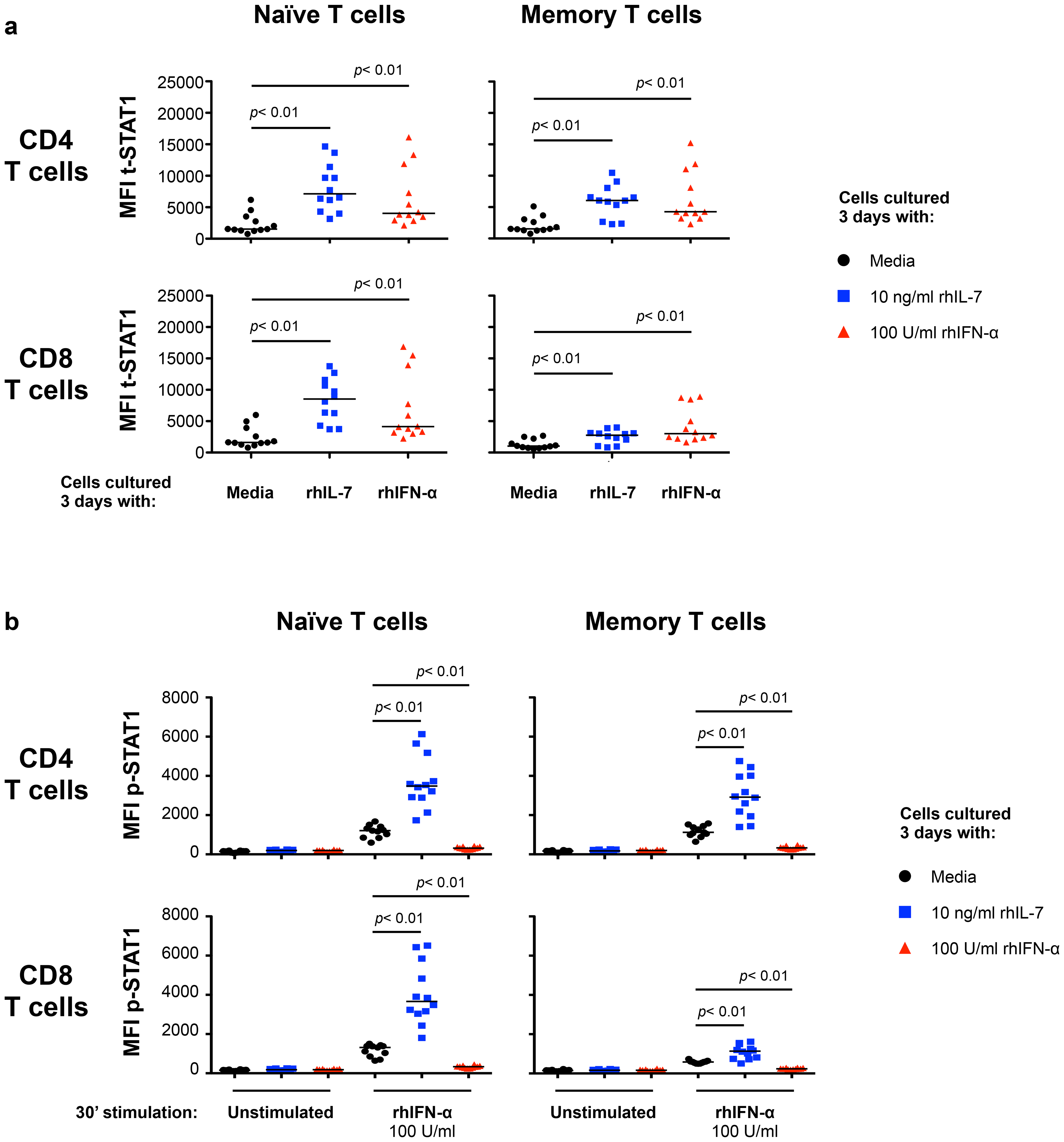 <i>In vitro</i> culture with IL-7 increases IFN-α-induced STAT1 activation (p-STAT1).