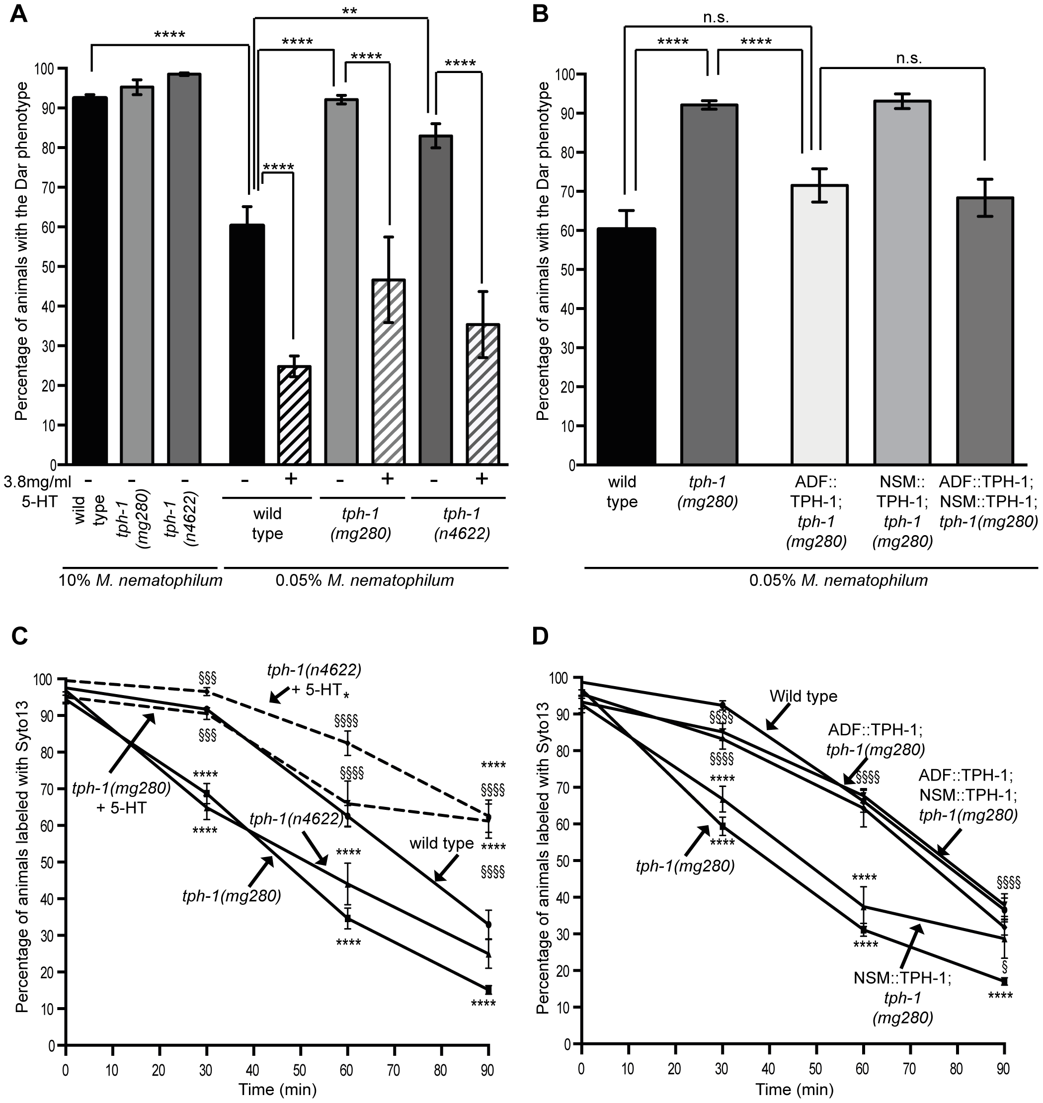 The serotonin biosynthetic enzyme TPH-1 is required in chemosensory neurons to inhibit the Dar phenotype and decrease pathogen clearance rates.
