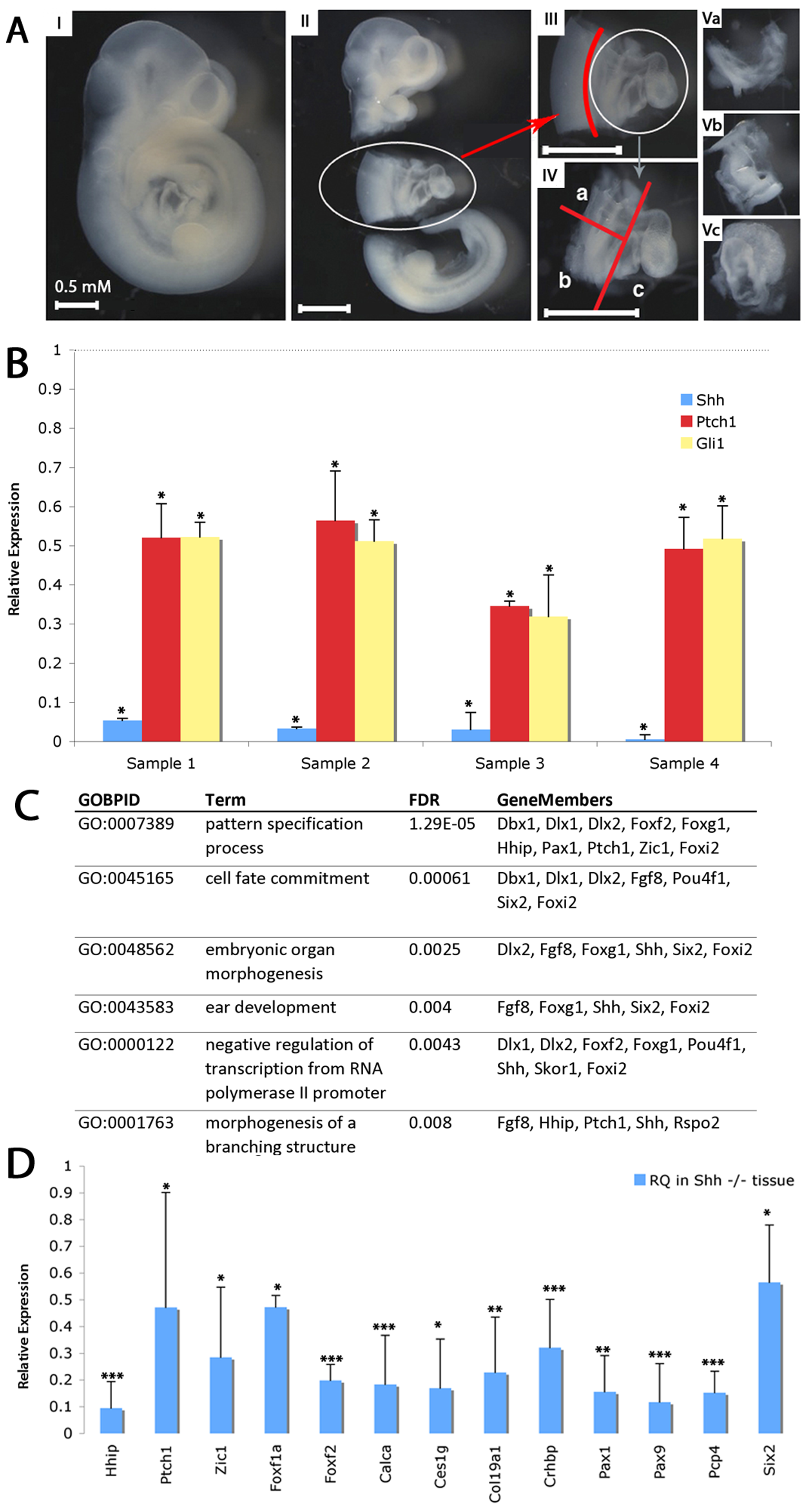 Transcriptional profiling of SHF from <i>shh<sup>−/−</sup></i> embryos.