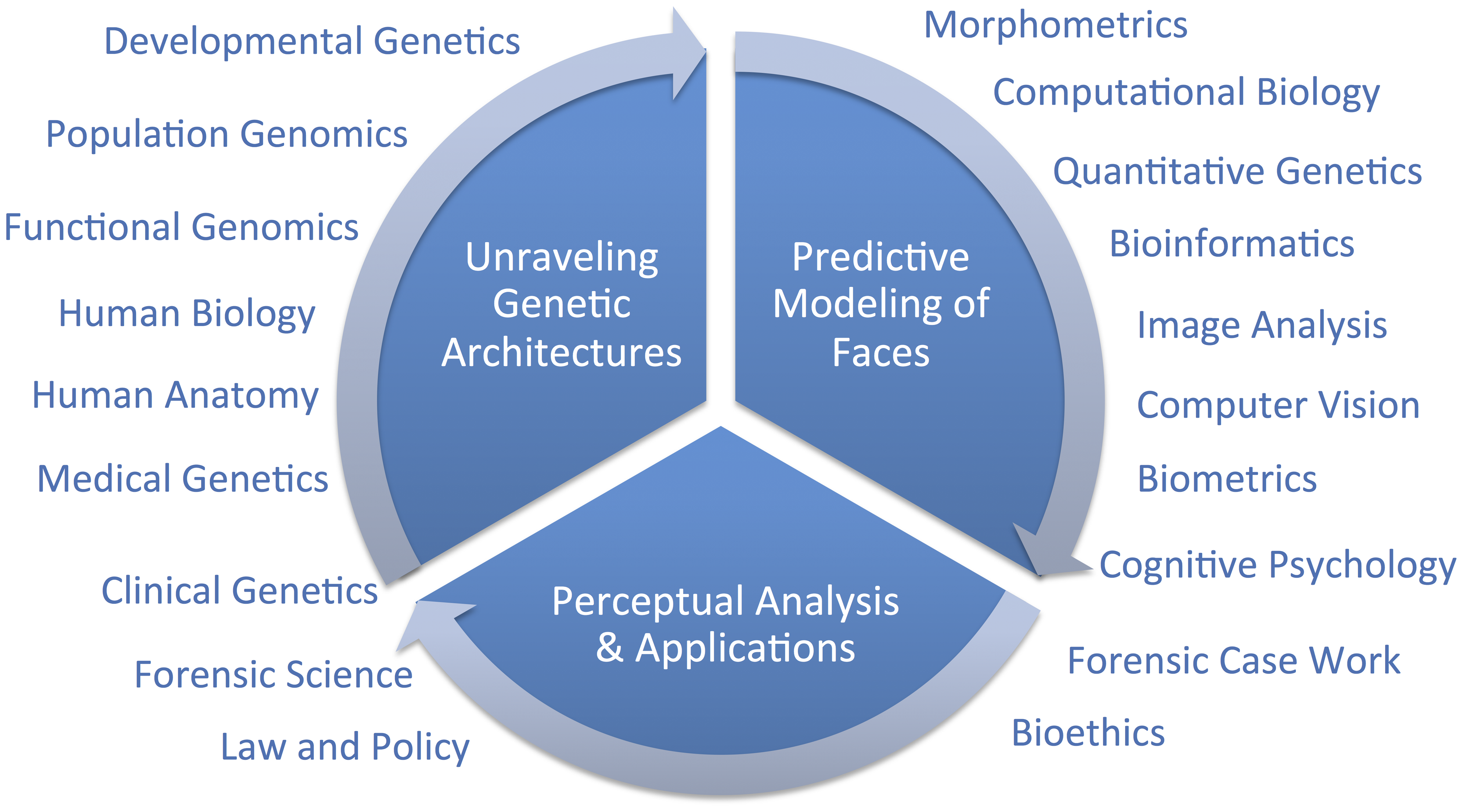 Diagram of a framework for research on modeling facial features from DNA.