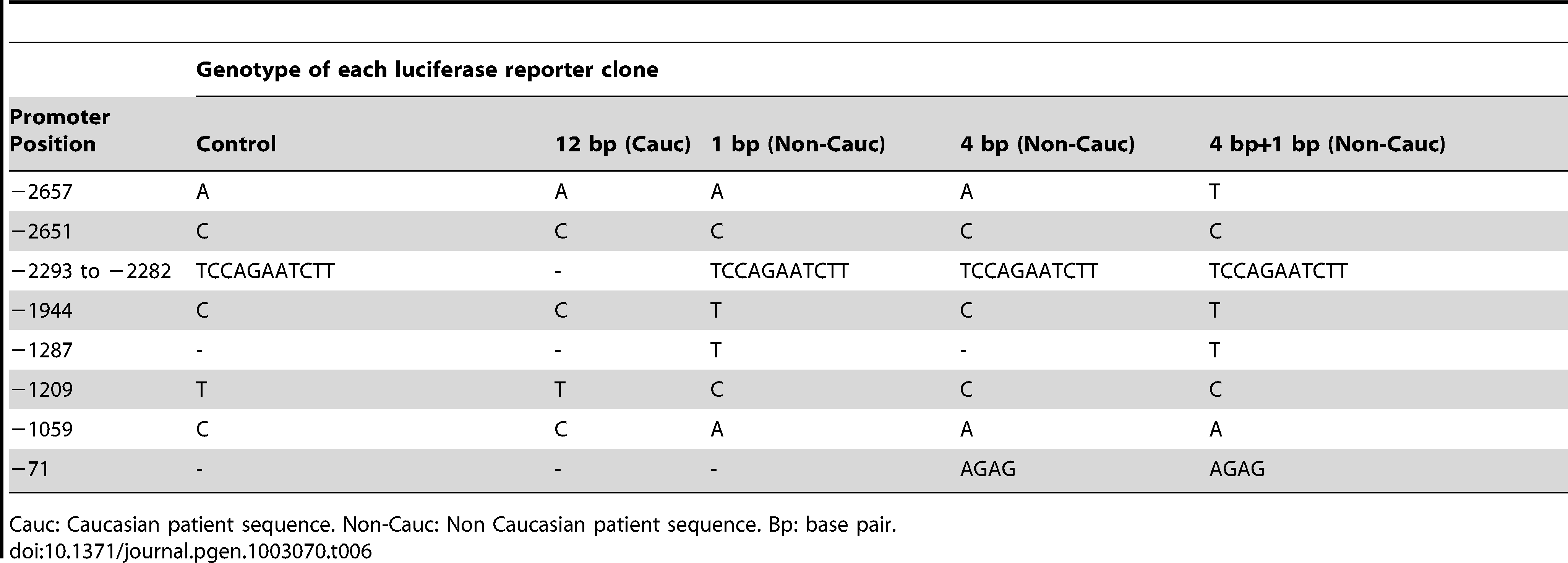 Sequences of BEEC patients and controls sub-cloned into the pGL3 luciferase vector.
