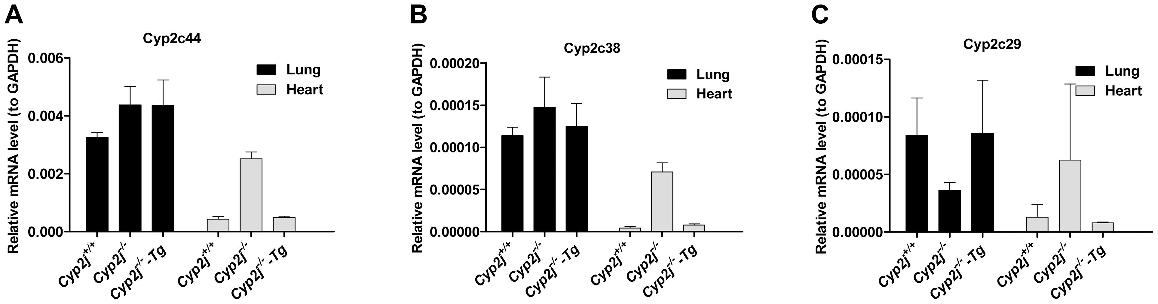 Gene expression by quantitative RT-PCR.